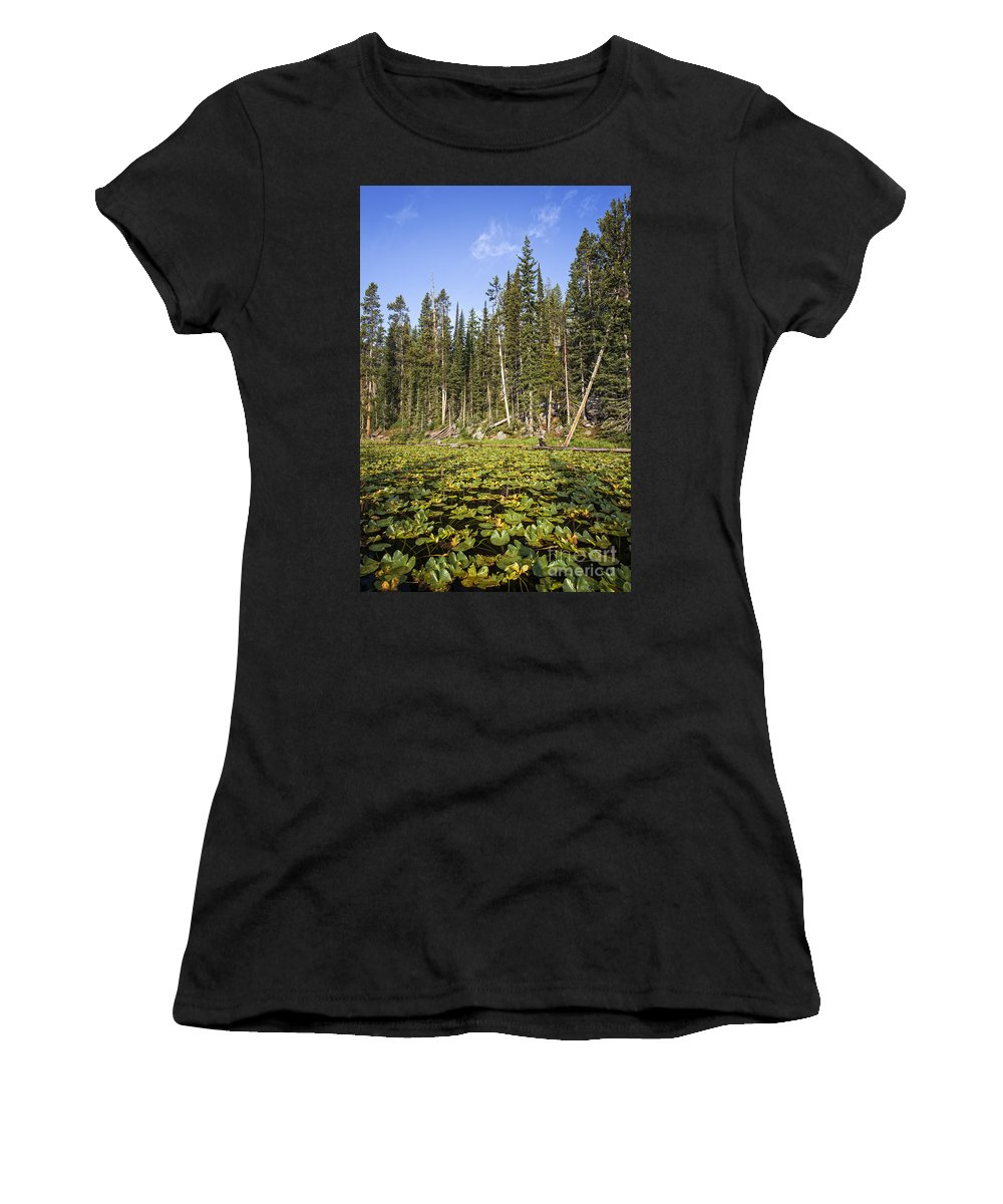 Isa Lake Women's T-Shirt featuring the photograph Lily Pads On Isa Lake by Bryan Mullennix