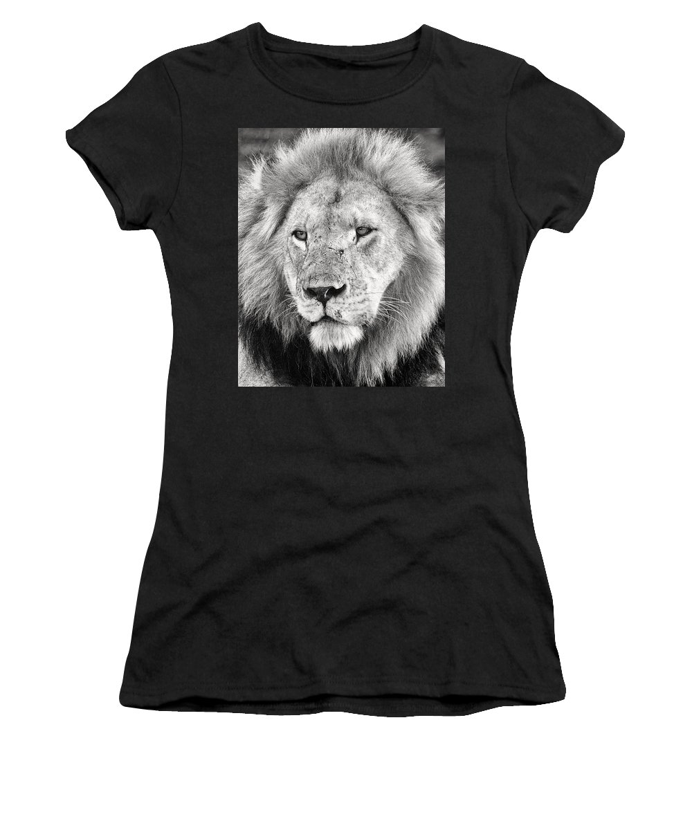 3scape Women's T-Shirt (Athletic Fit) featuring the photograph Lion King by Adam Romanowicz