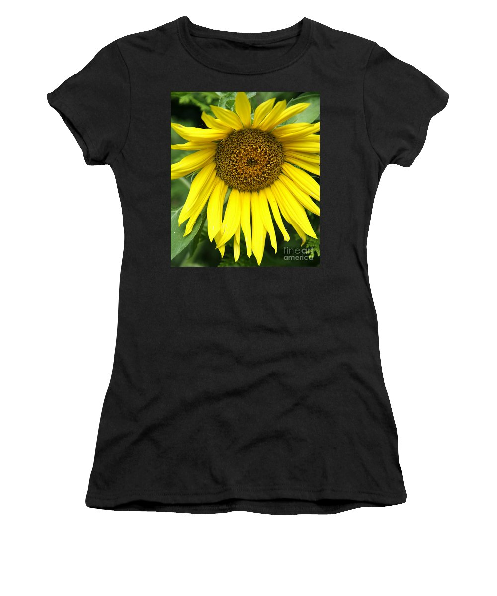 Sunflower Women's T-Shirt (Athletic Fit) featuring the photograph Little Sunshine by Christiane Schulze Art And Photography