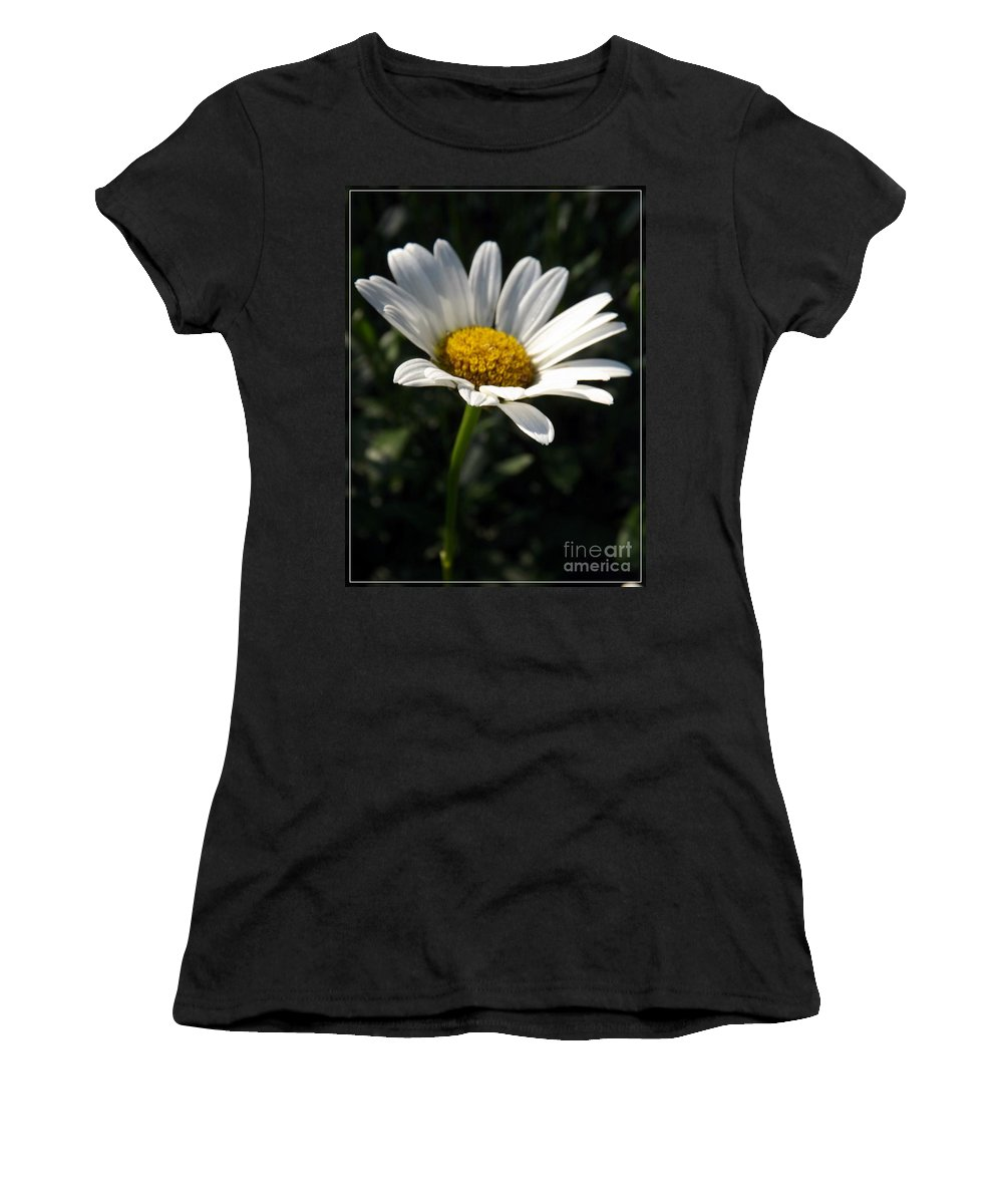 Flower Women's T-Shirt featuring the photograph Lone Daisy by Sara Raber