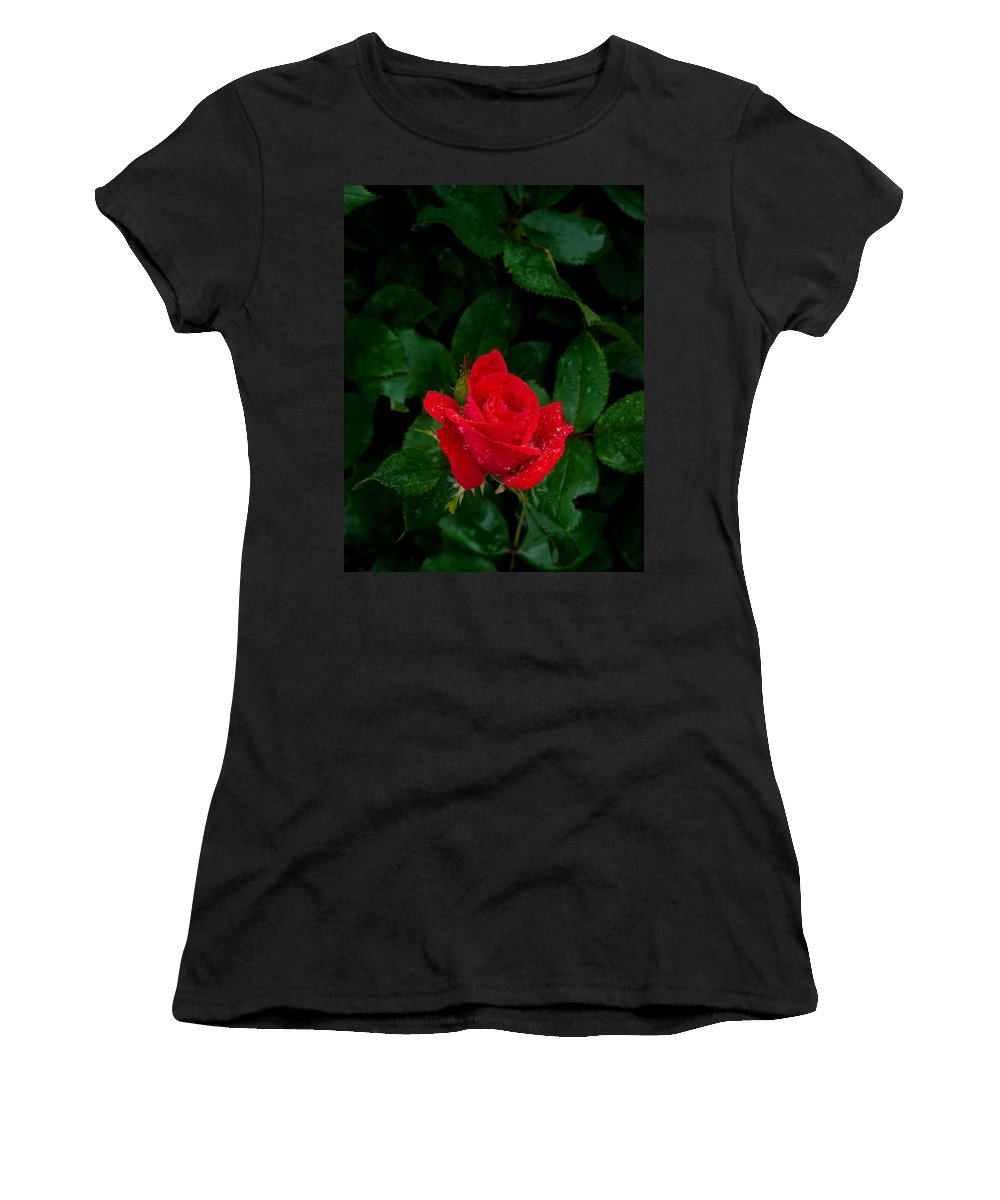 Flower Women's T-Shirt (Athletic Fit) featuring the photograph Lonely Rose by Benjamin Reed