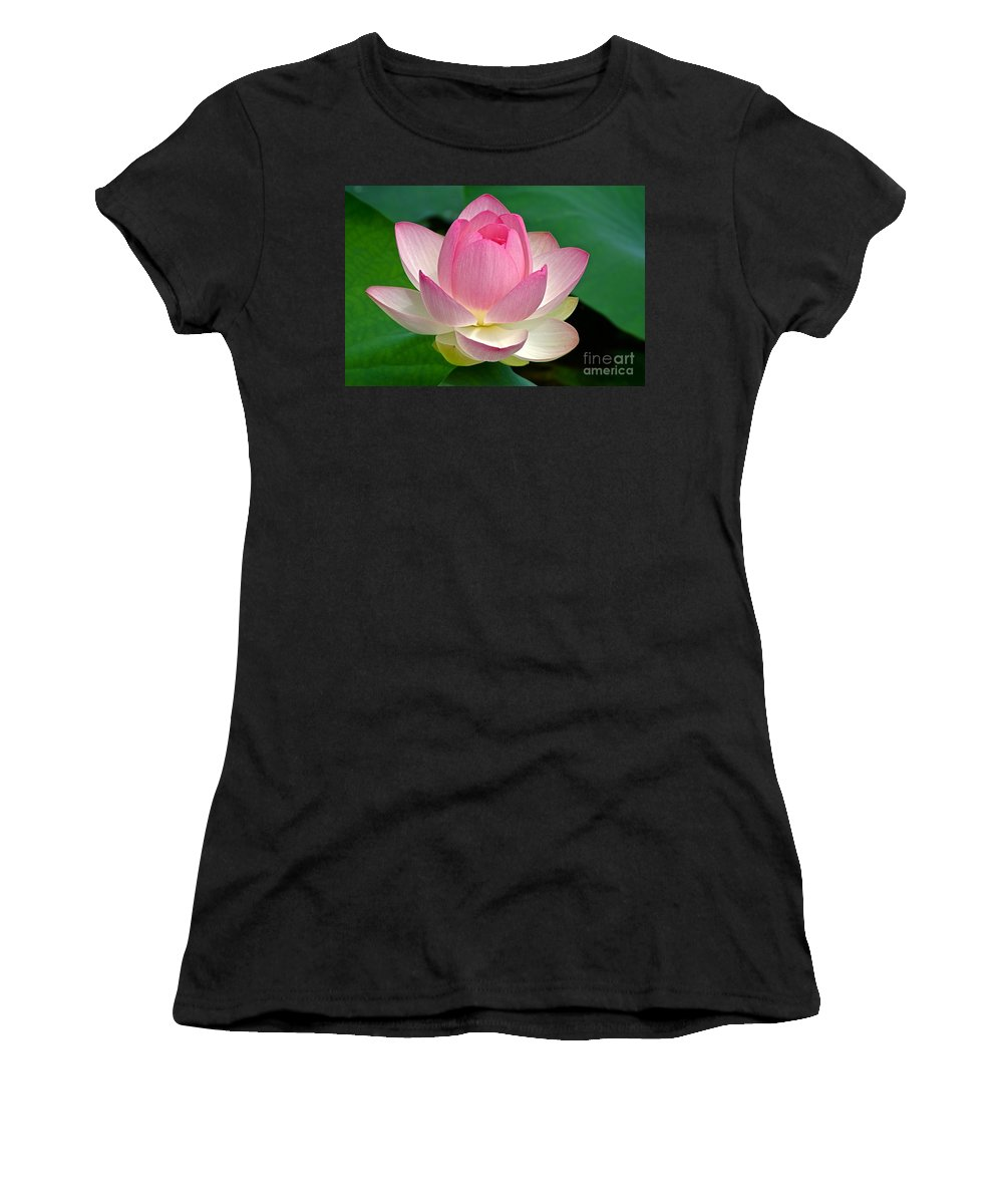 Lotus Women's T-Shirt (Athletic Fit) featuring the photograph Lotus 7152010 by Byron Varvarigos