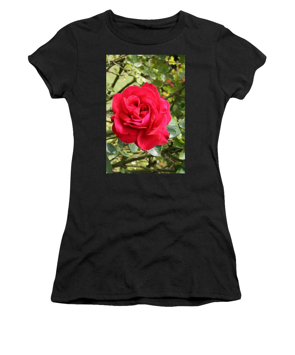 Rose Women's T-Shirt (Athletic Fit) featuring the photograph Lovely Red Rose by Christiane Schulze Art And Photography