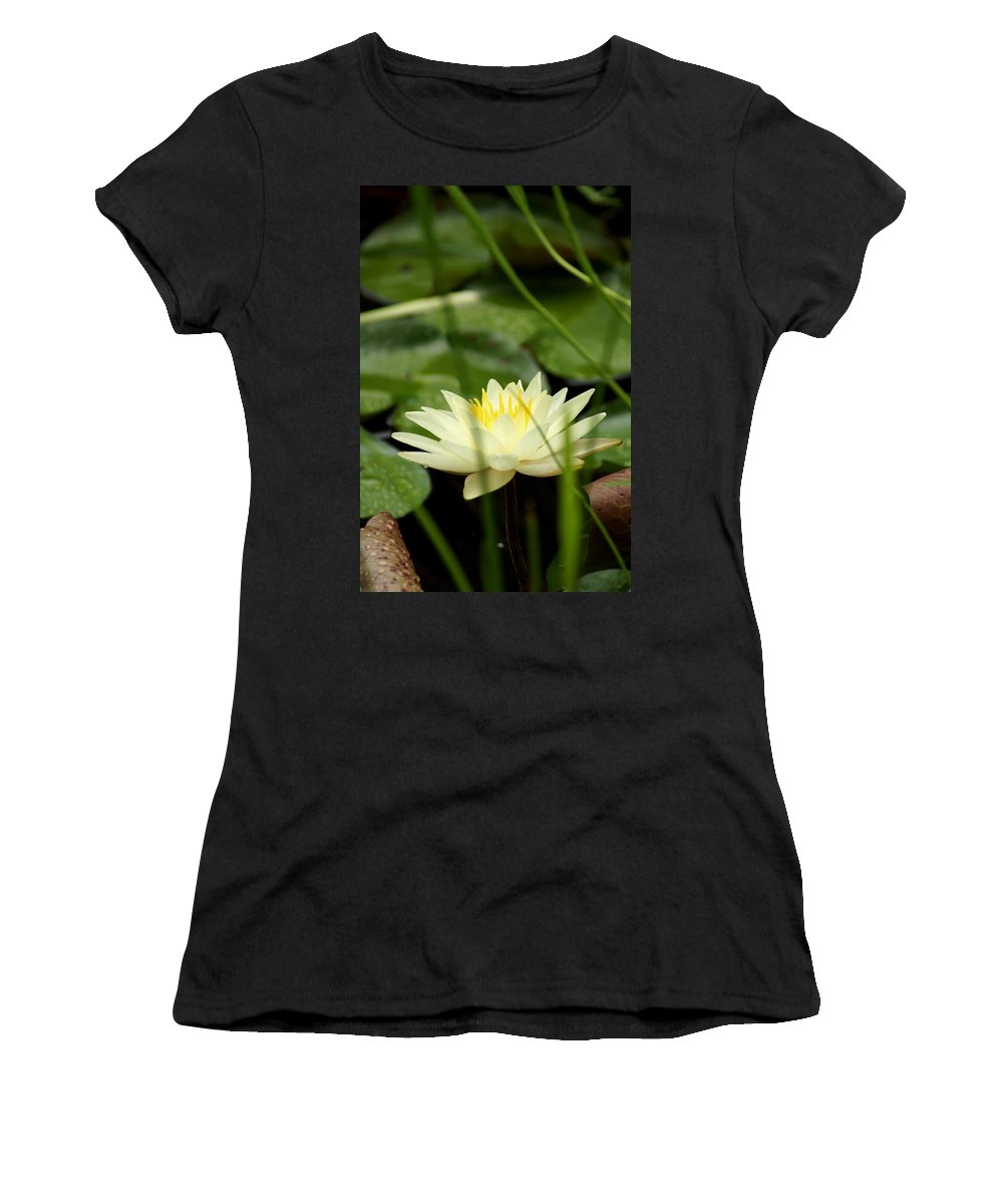 A Fragrant Lust Women's T-Shirt featuring the photograph Lust by Kim Pate