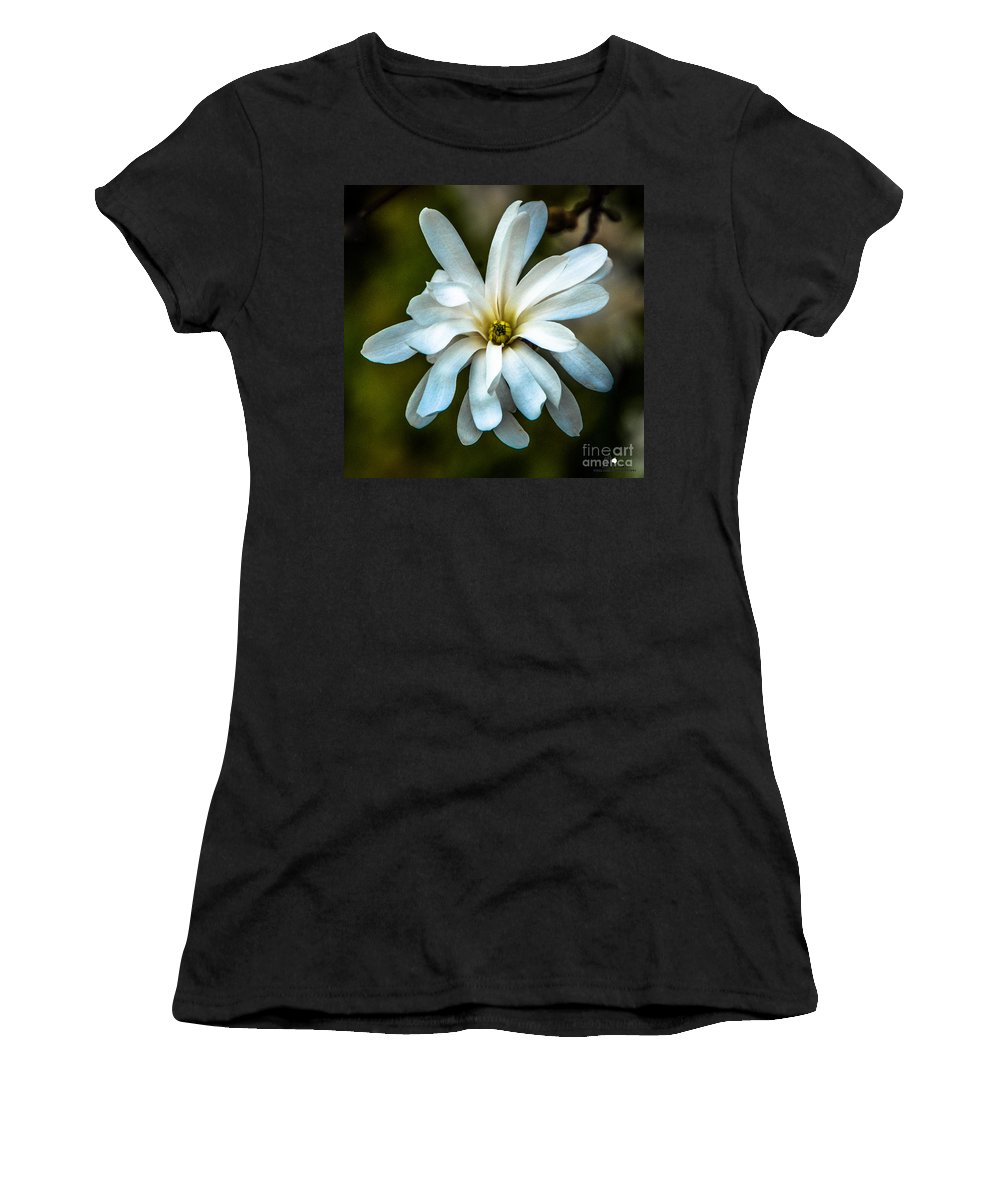 Magnolia Women's T-Shirt featuring the photograph Magnolia Blossom by Grace Grogan