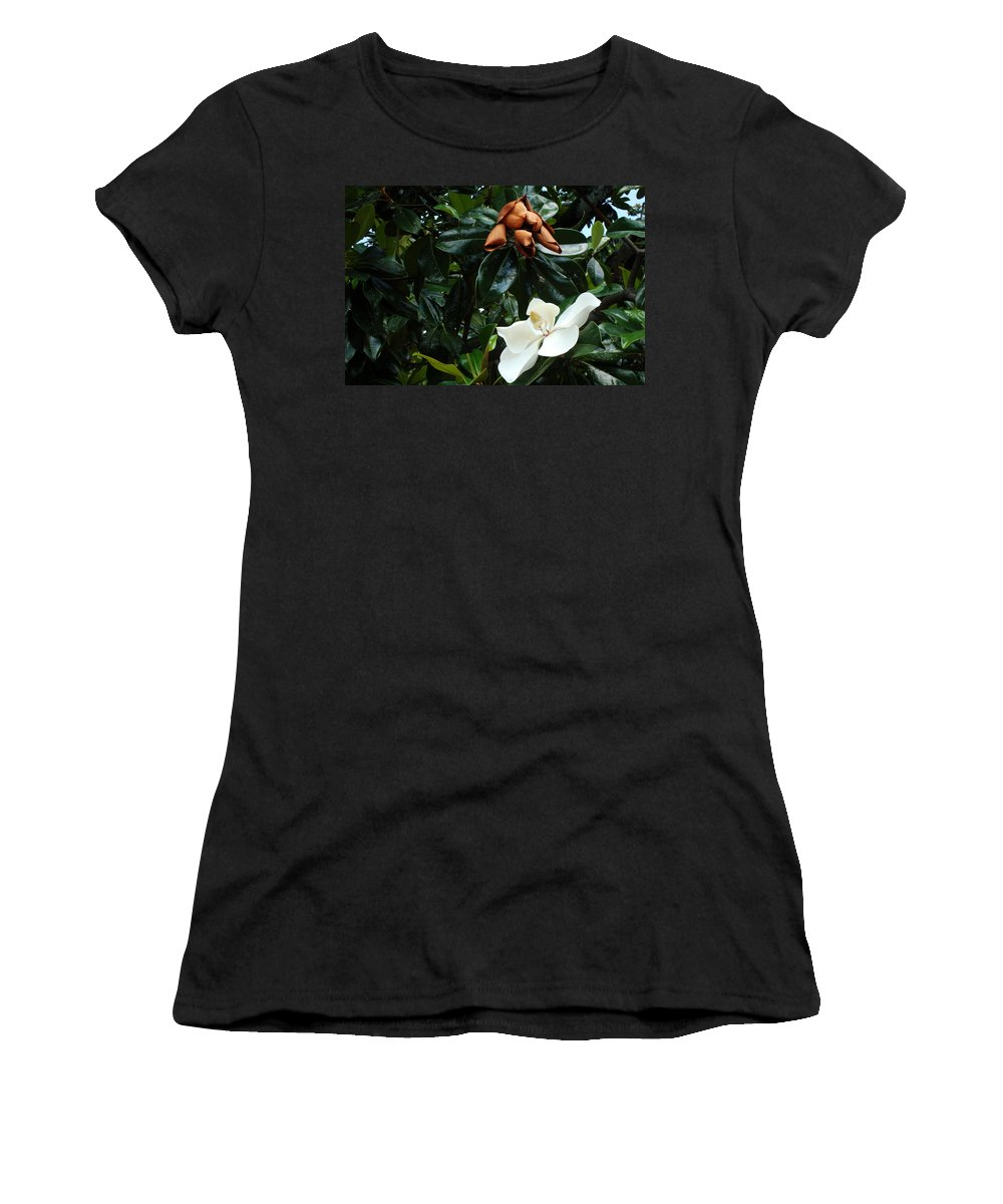 Magnolias Women's T-Shirt (Athletic Fit) featuring the photograph Magnolias by K Conway