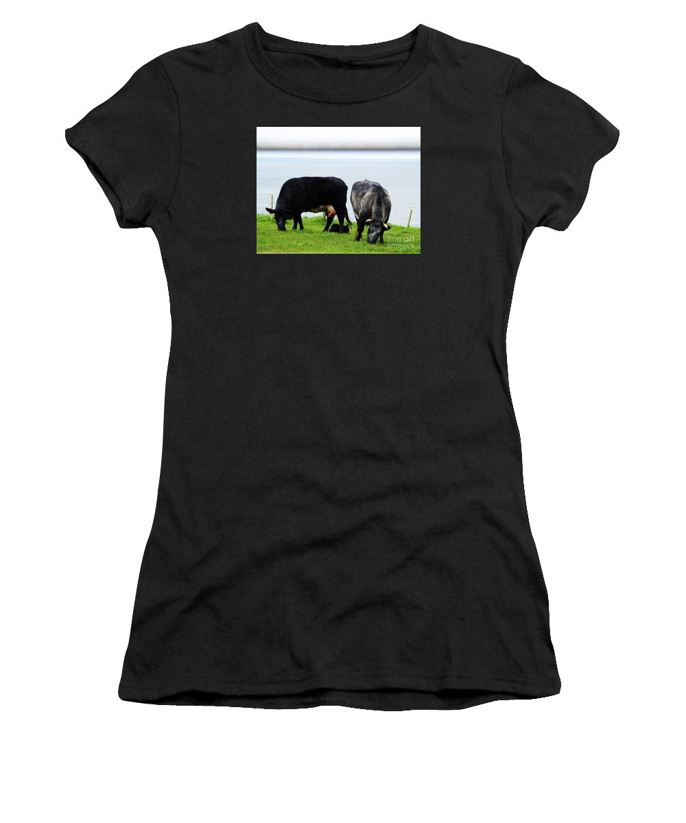 Cow Photography Women's T-Shirt (Athletic Fit) featuring the photograph Mama Daddy And Baby by Patricia Griffin Brett