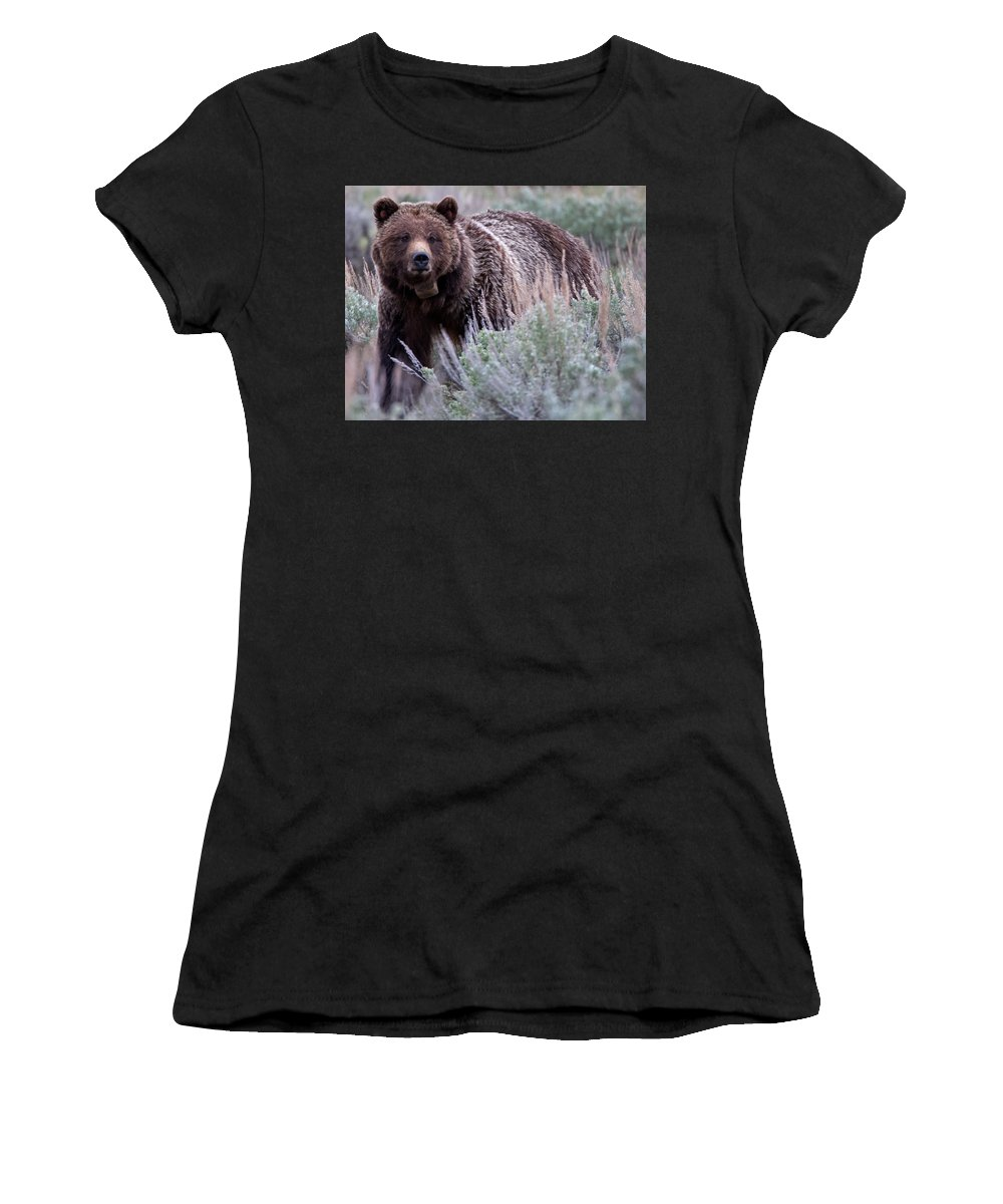 Grizzly Women's T-Shirt featuring the photograph Mama Grizzly by Natural Focal Point Photography