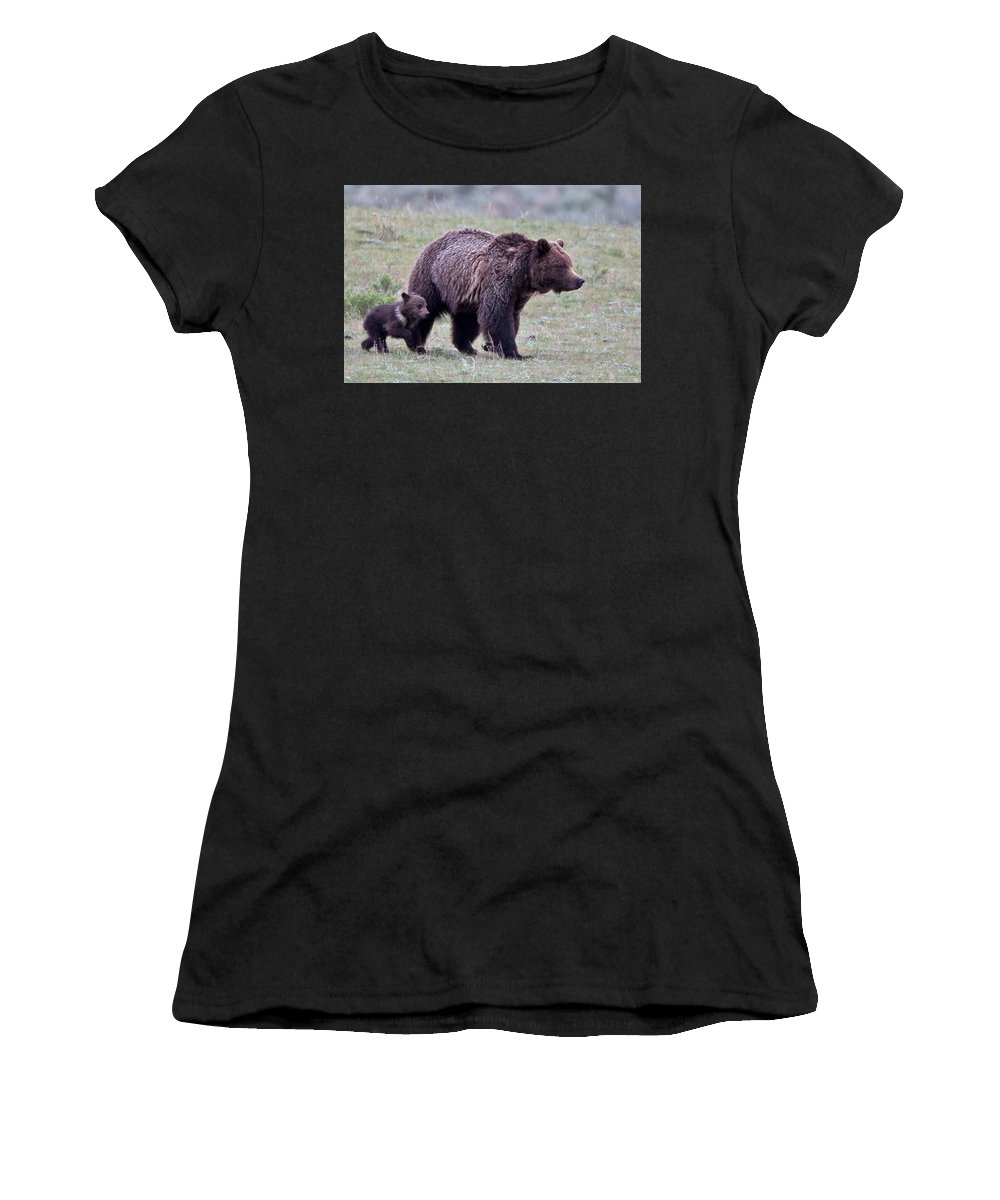 Grizzly Women's T-Shirt (Athletic Fit) featuring the photograph Marching Mama Grizzly And Cub by Natural Focal Point Photography