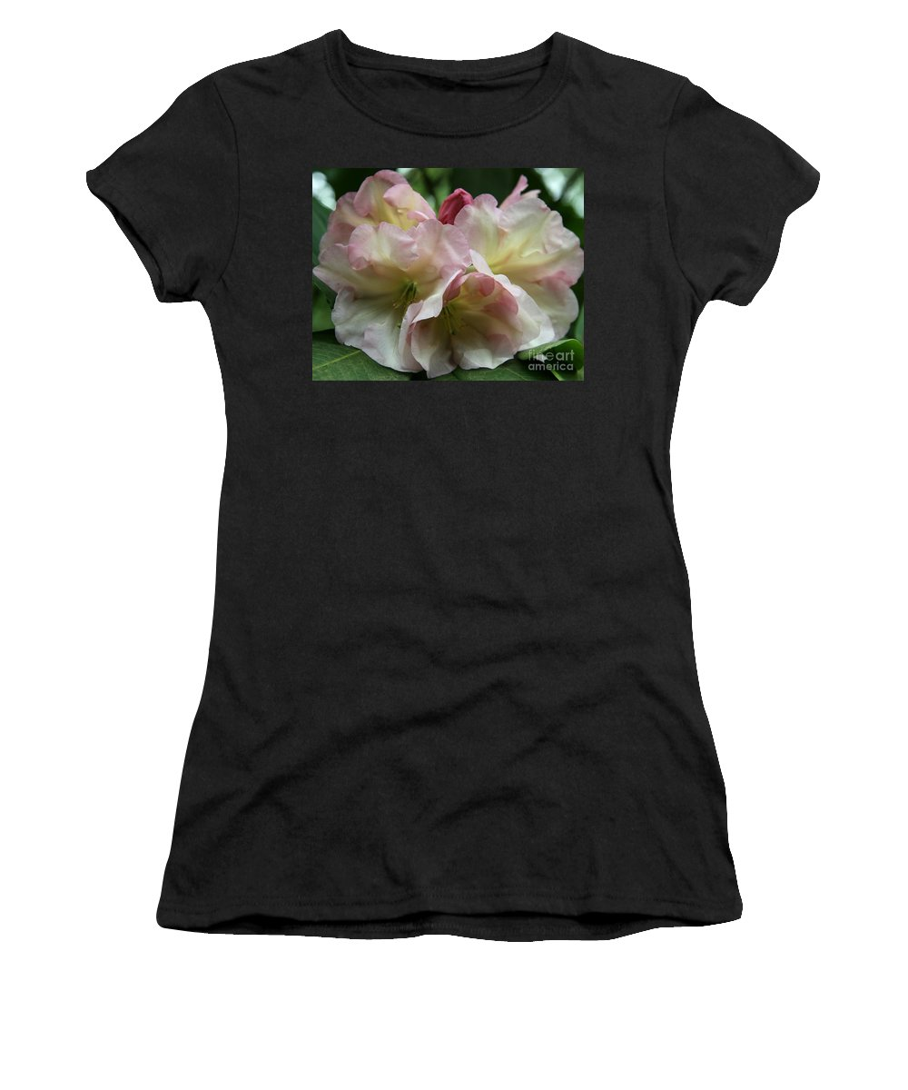 Rhododendron Women's T-Shirt (Athletic Fit) featuring the photograph Mellow Pink by Christiane Schulze Art And Photography