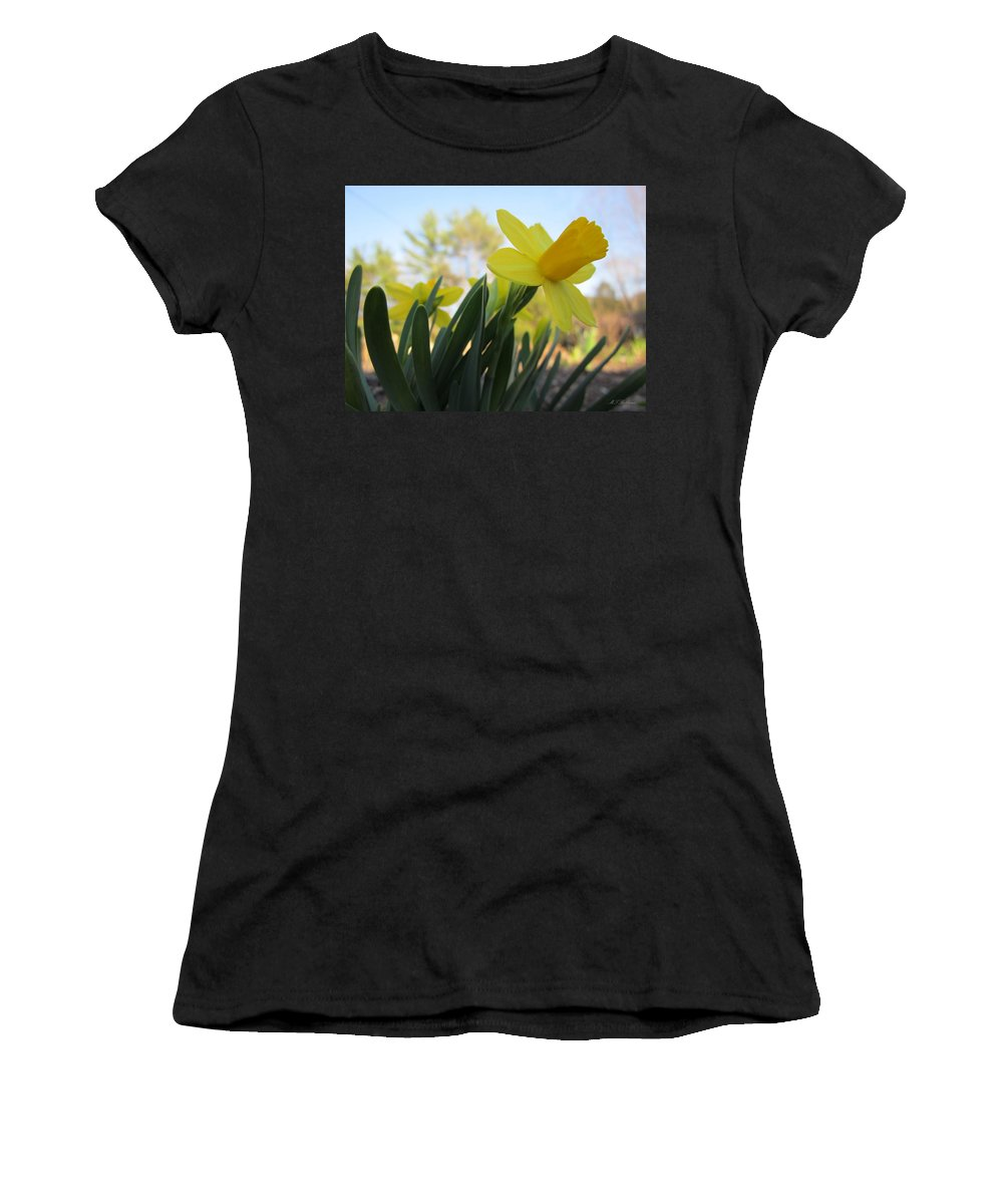 Daffodils Women's T-Shirt (Athletic Fit) featuring the photograph Mini Daffodils by MTBobbins Photography