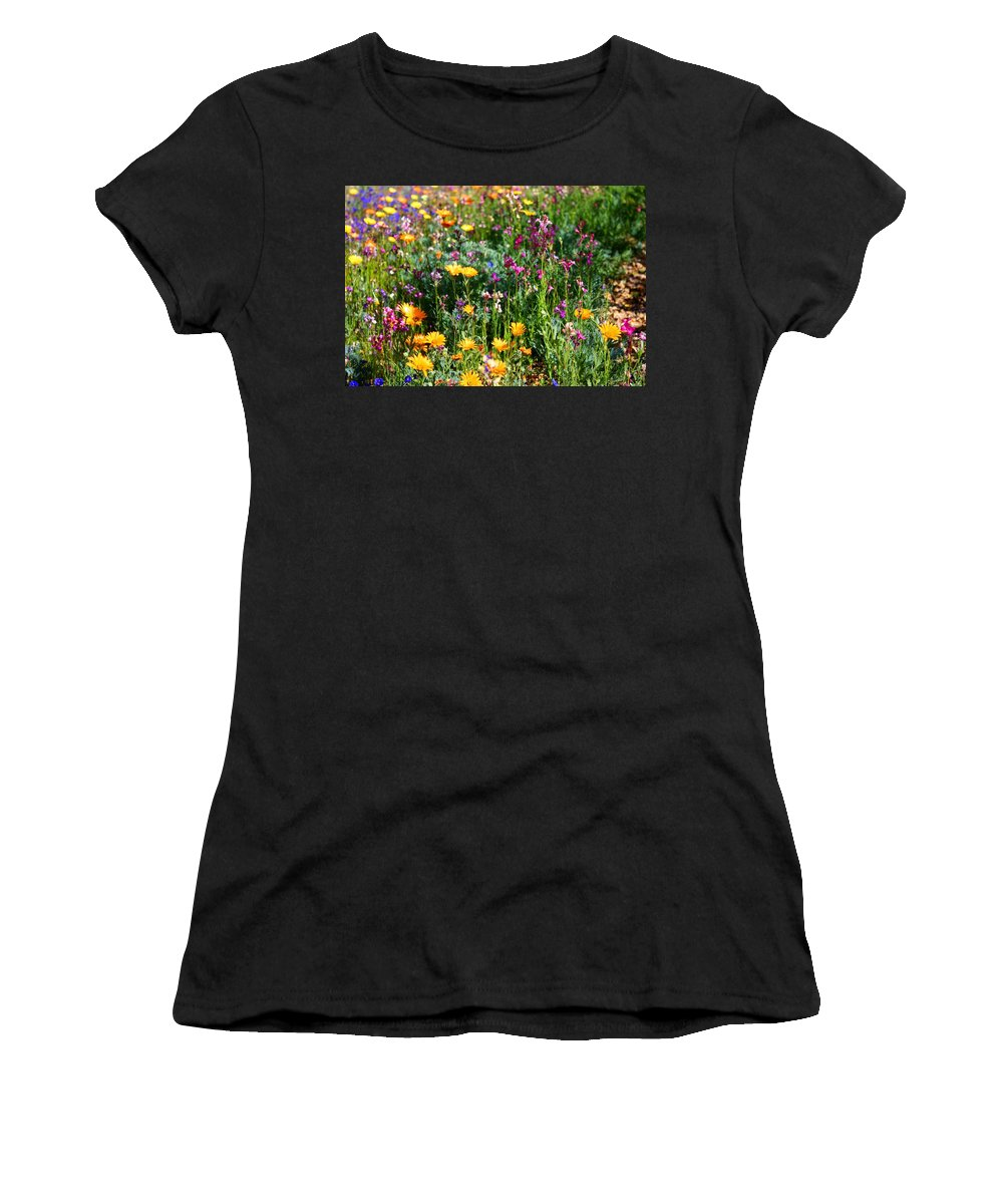 Wildflower Women's T-Shirt featuring the photograph Mixed Wildflowers by Kathryn Meyer