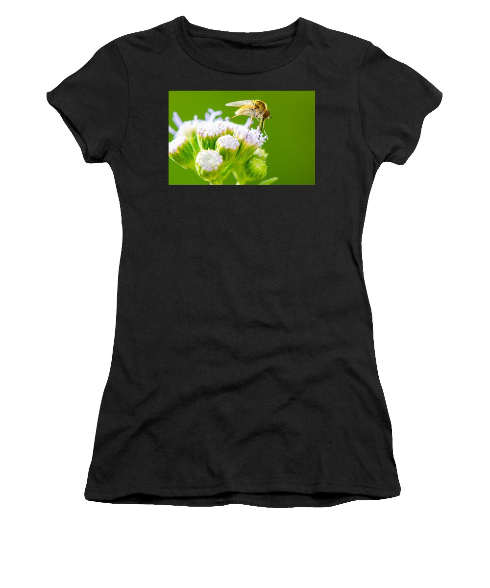 Mosquito Women's T-Shirt (Athletic Fit) featuring the photograph Mosquito by Michael Moriarty