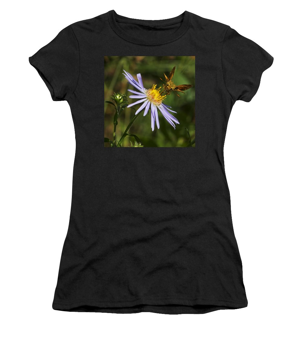 Nature Women's T-Shirt (Athletic Fit) featuring the photograph Moth Feeding On Aster Dragon by Belinda Greb
