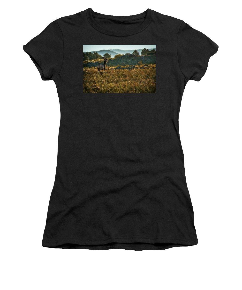 Mule Deer At De Weese Reservoir Women's T-Shirt (Athletic Fit) featuring the photograph Mule Deer At De Weese Reservoir by Priscilla Burgers