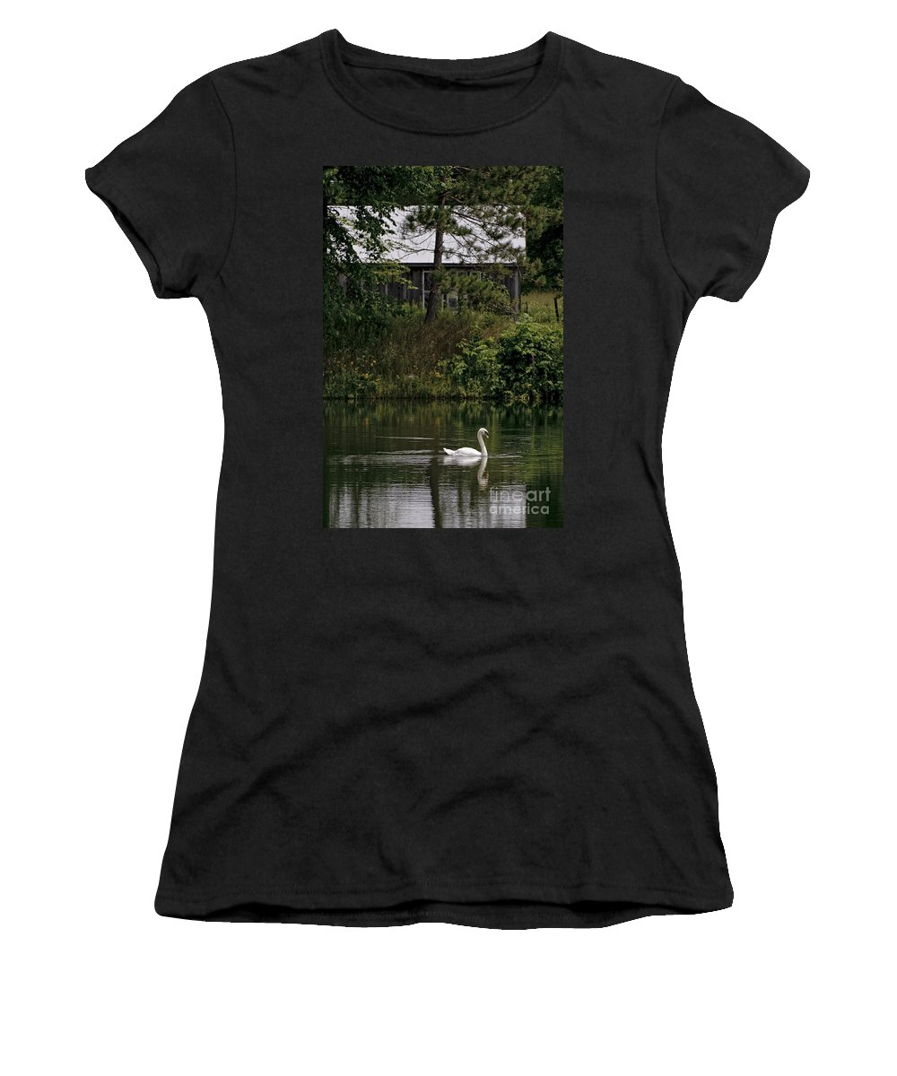 Mute Swan Women's T-Shirt featuring the photograph Mute Swan Pictures 199 by World Wildlife Photography