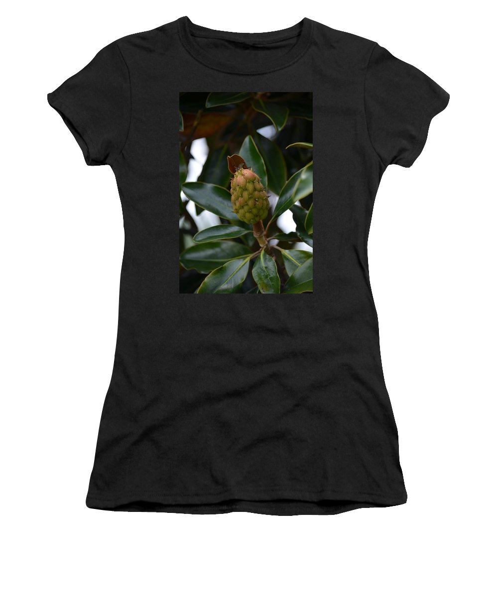 New Start Magnolia Women's T-Shirt (Athletic Fit) featuring the photograph New Start Magnolia by Maria Urso