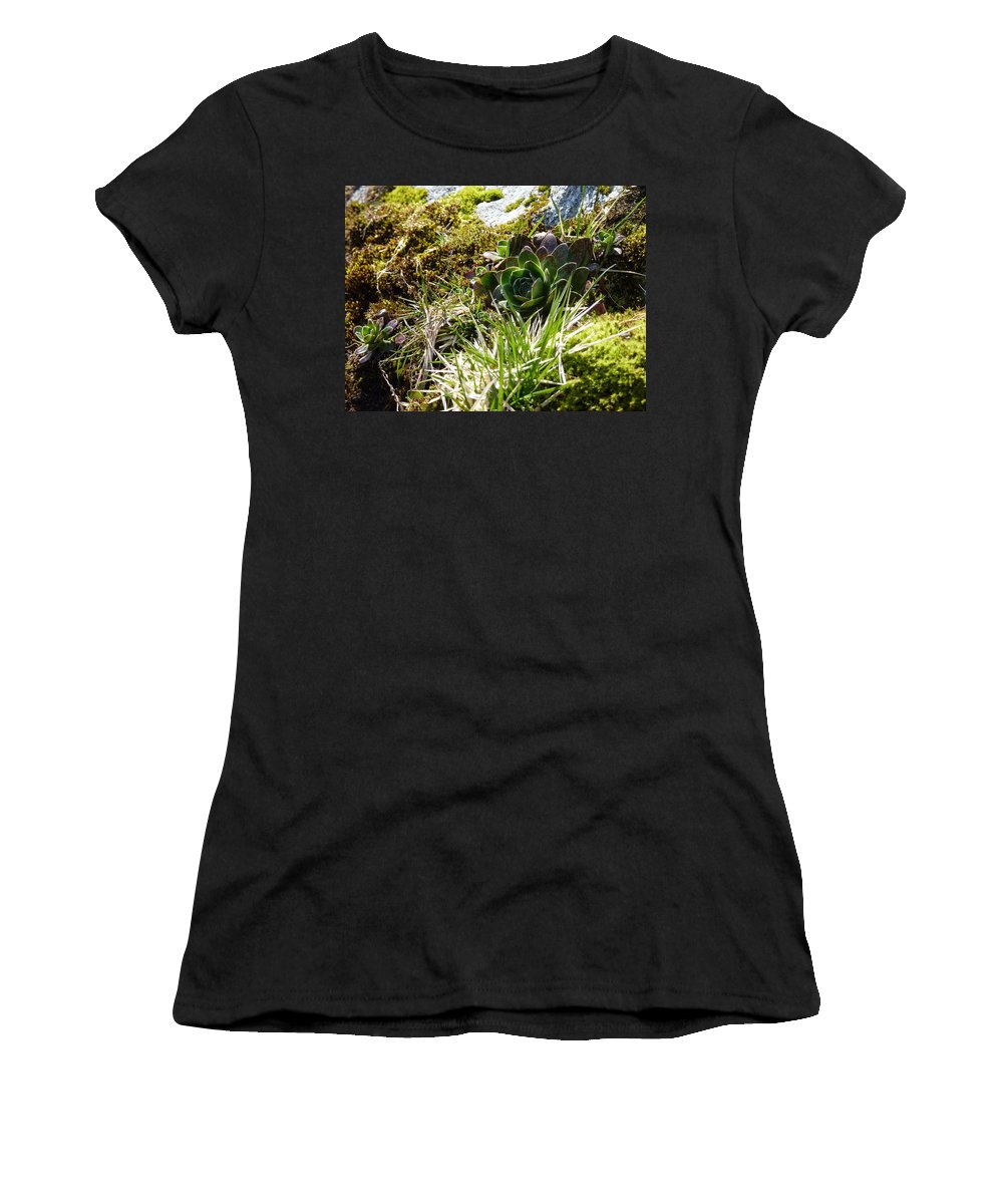 Women's T-Shirt (Athletic Fit) featuring the photograph Northern Rose by Katerina Naumenko