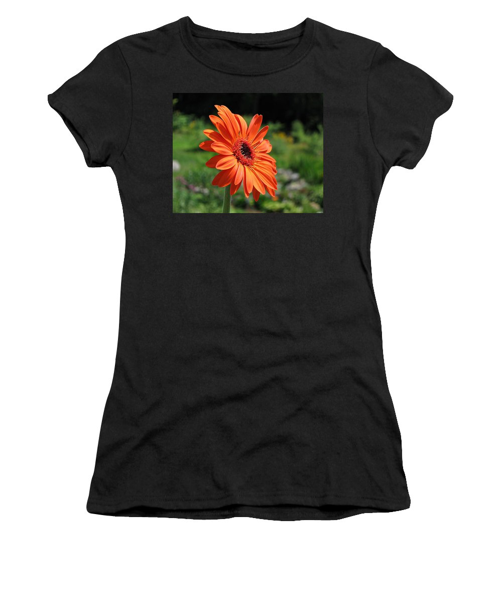 Gerbera Daisy Women's T-Shirt (Athletic Fit) featuring the photograph Orange Gerbera Daisy by MTBobbins Photography