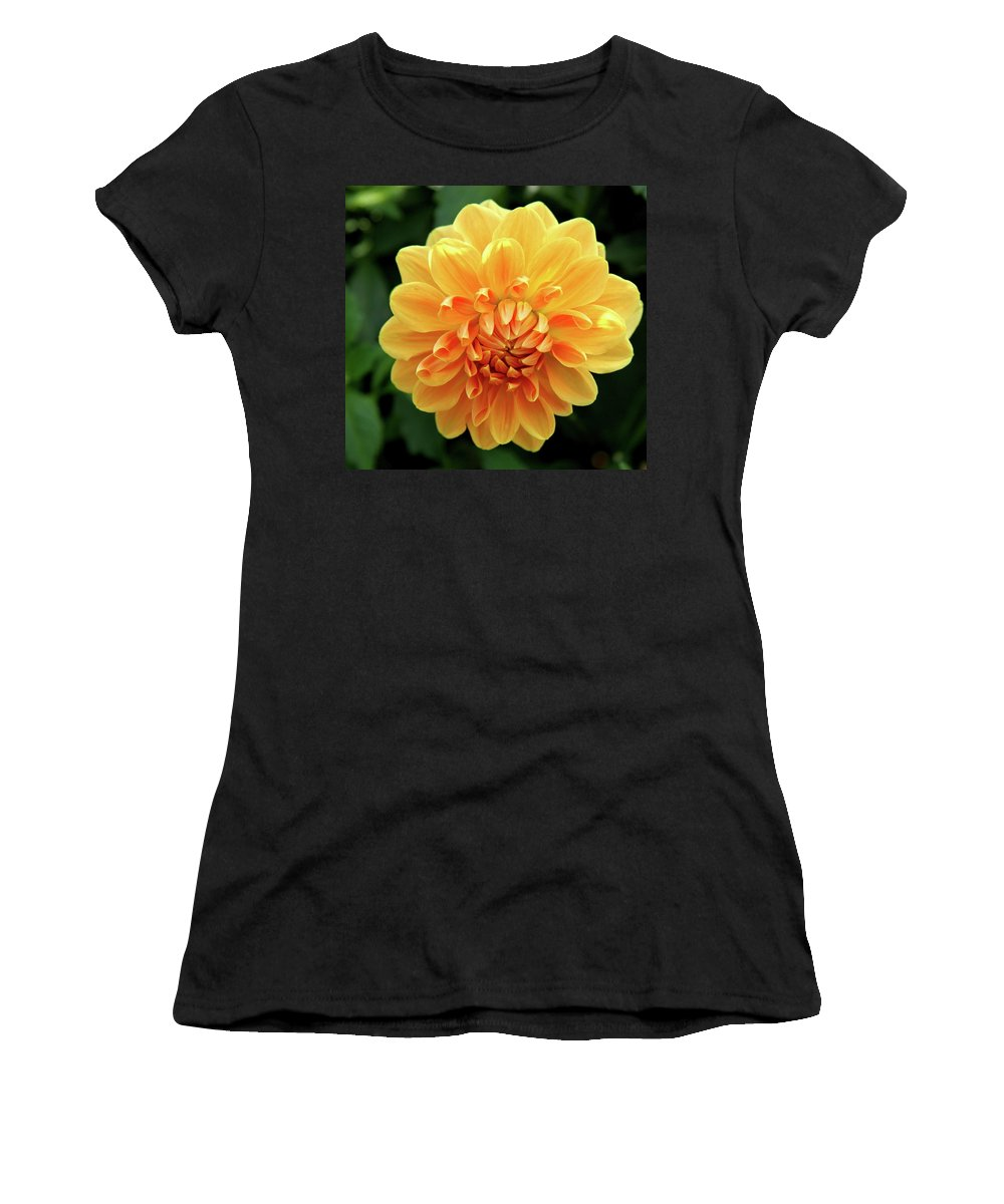 Dahlia Women's T-Shirt (Athletic Fit) featuring the photograph Orange Sun by Christiane Schulze Art And Photography