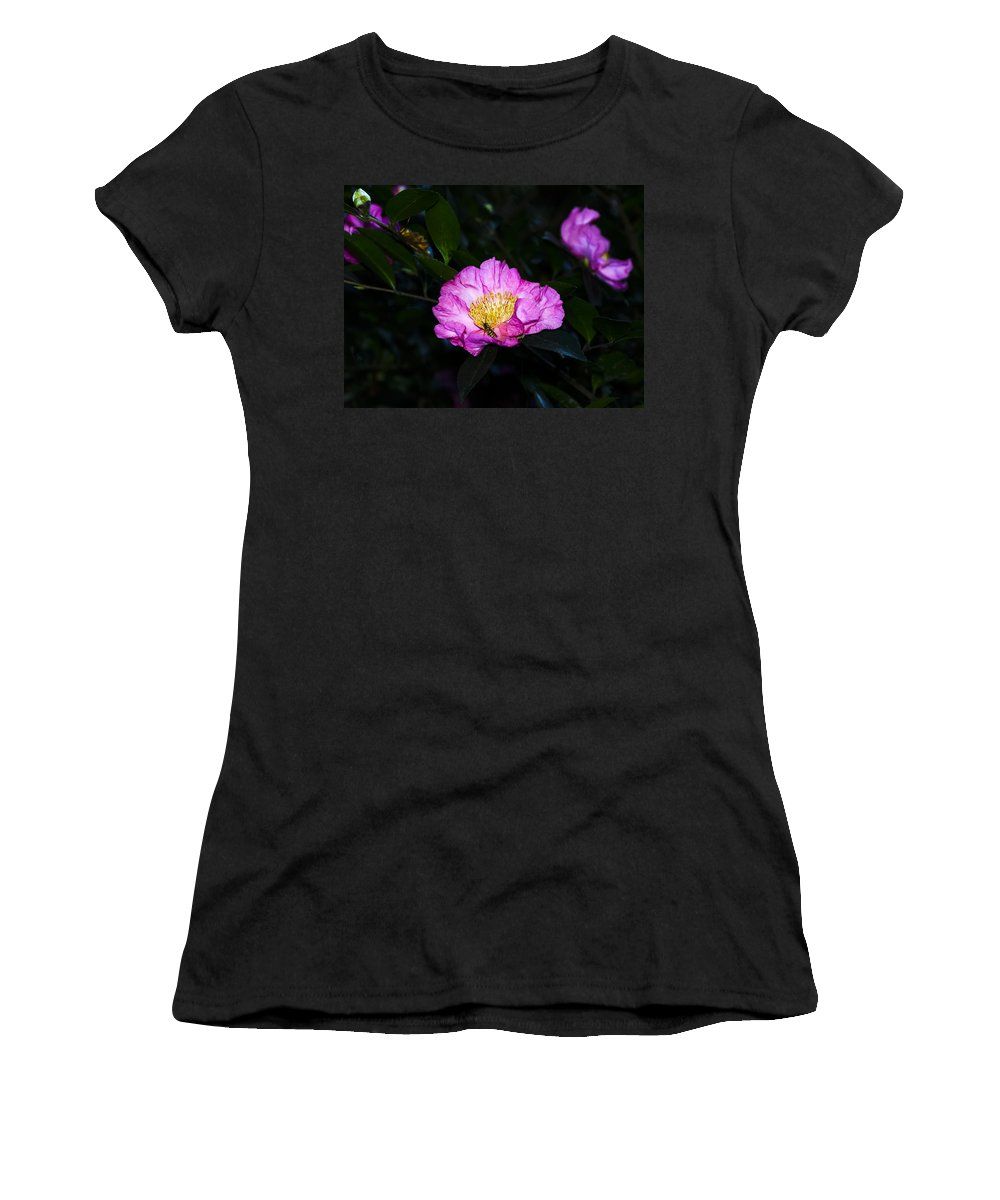 North Carolina Women's T-Shirt featuring the photograph Orchid Camellia Pink - Camellia Sasanqua by Greg Reed