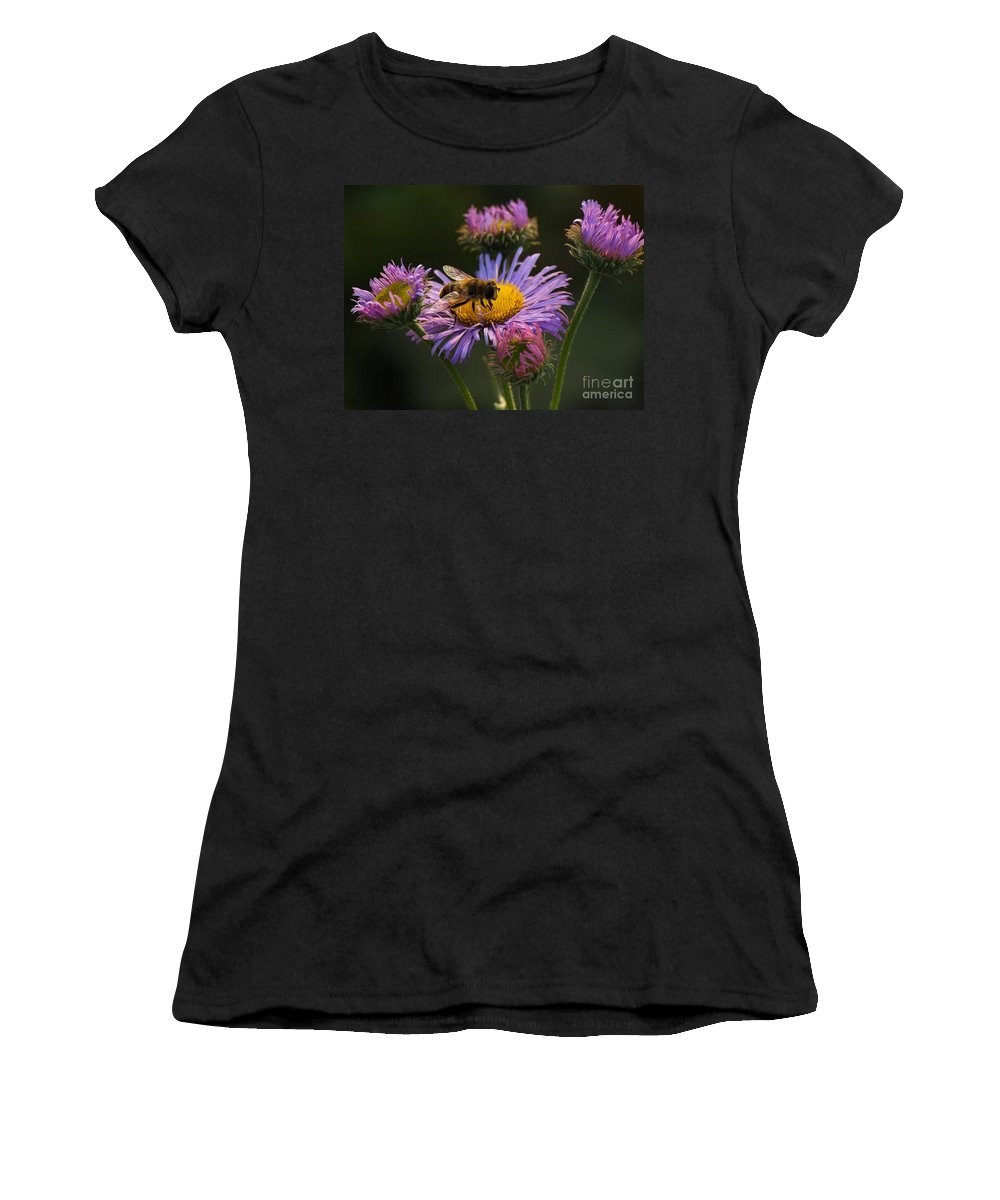 Bee Women's T-Shirt featuring the photograph Painted By Nature by Brothers Beerens