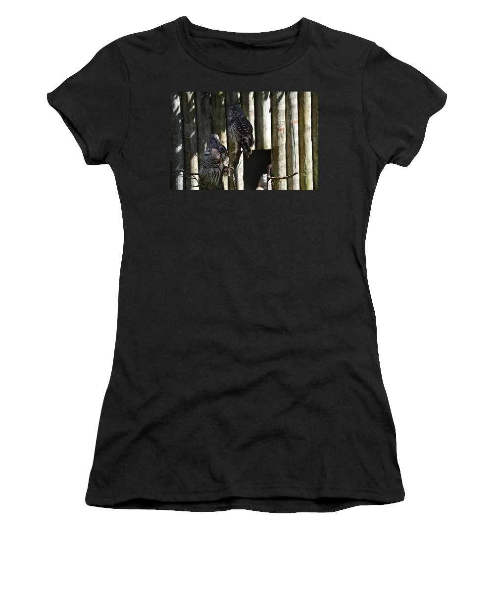 Owl Women's T-Shirt (Athletic Fit) featuring the photograph Pair Of Owls by Linda Kerkau