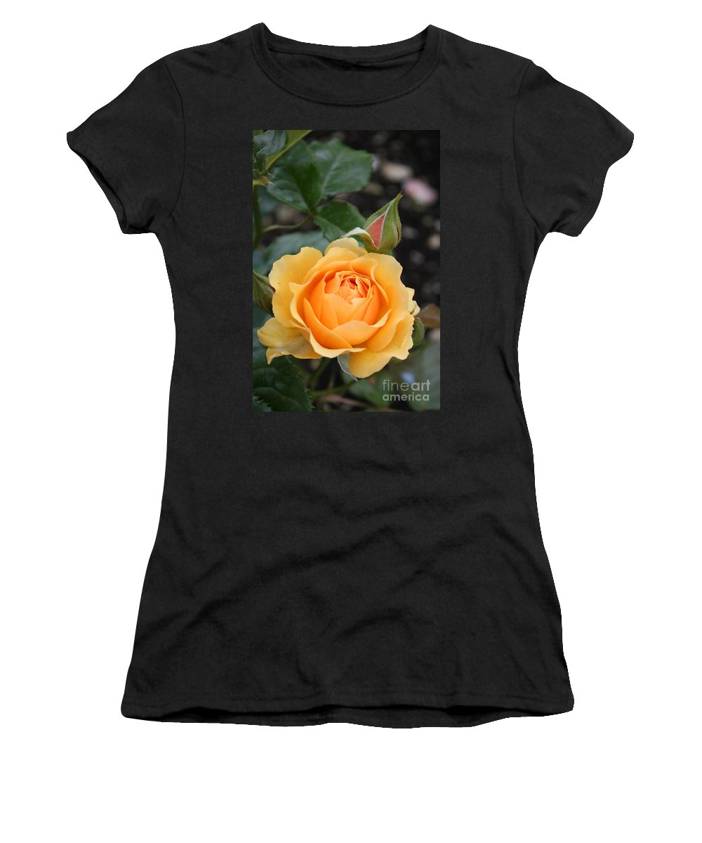 Rose Women's T-Shirt (Athletic Fit) featuring the photograph Perfect Rose by Christiane Schulze Art And Photography