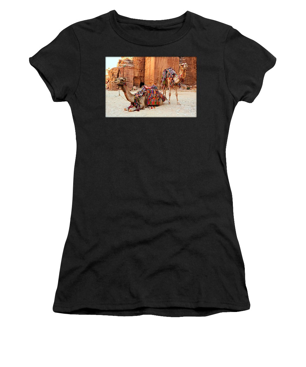 Ancient Women's T-Shirt featuring the photograph Petra Camels by Stephen Stookey