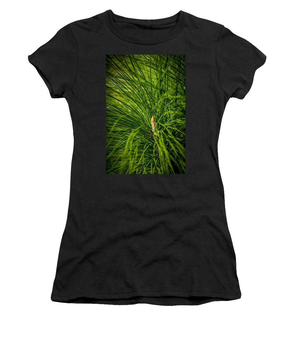 Pine Trees Women's T-Shirt (Athletic Fit) featuring the photograph Pine Needles by Marvin Spates