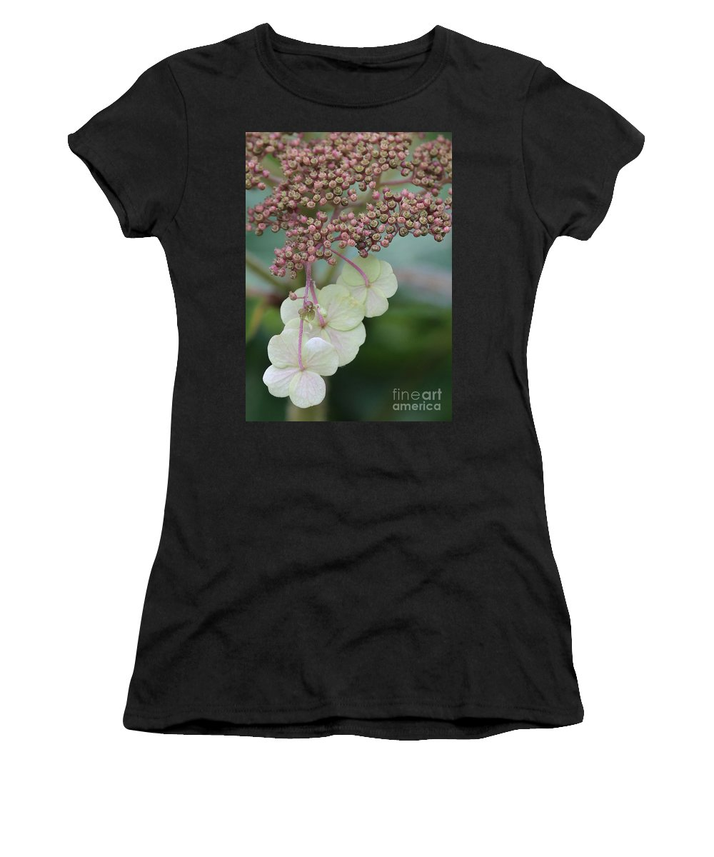 Hydrangea Women's T-Shirt (Athletic Fit) featuring the photograph Pink And Green Hydrangea Closeup by Carol Groenen