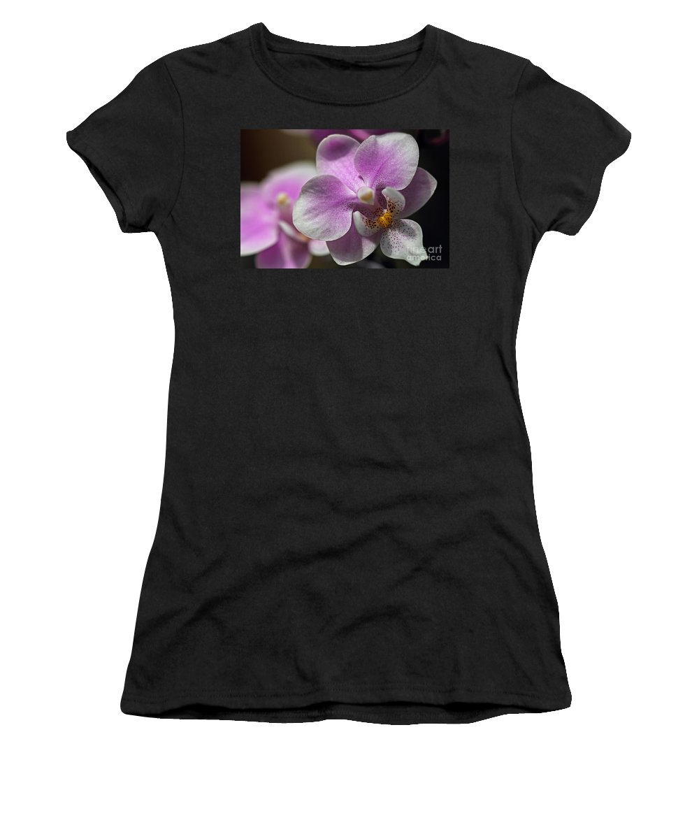 Pink And White Orchid Women's T-Shirt (Athletic Fit) featuring the photograph Pink And White Orchid by Meg Rousher