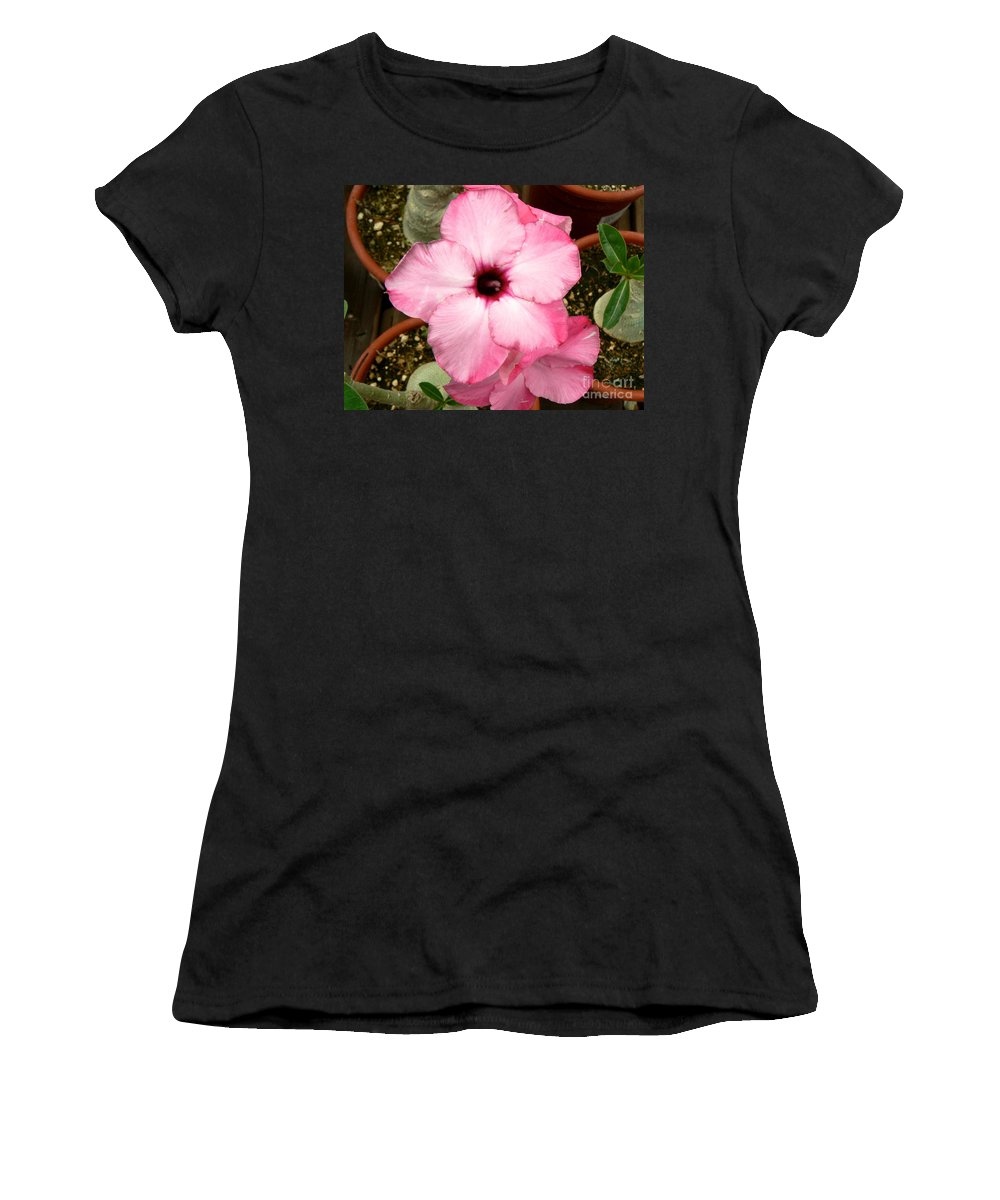 Flowers Women's T-Shirt (Athletic Fit) featuring the photograph Pink Succulent Flower by Rincon Road Photography By Ben Petersen