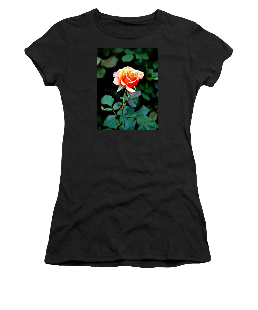 Rose Women's T-Shirt featuring the photograph Pinkish Peach by Jay Milo