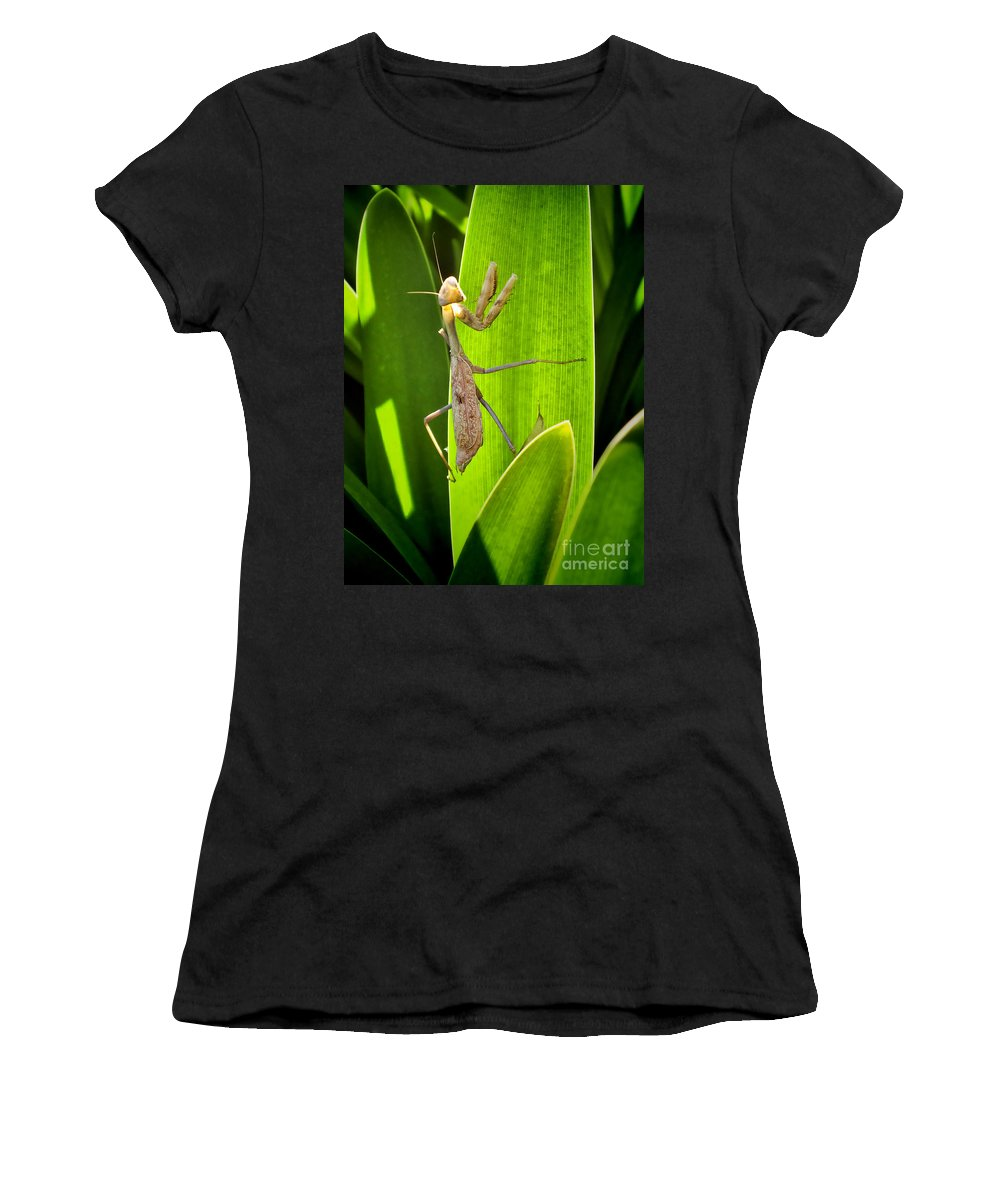Praying Women's T-Shirt (Athletic Fit) featuring the photograph Praying Mantis by Kasia Bitner