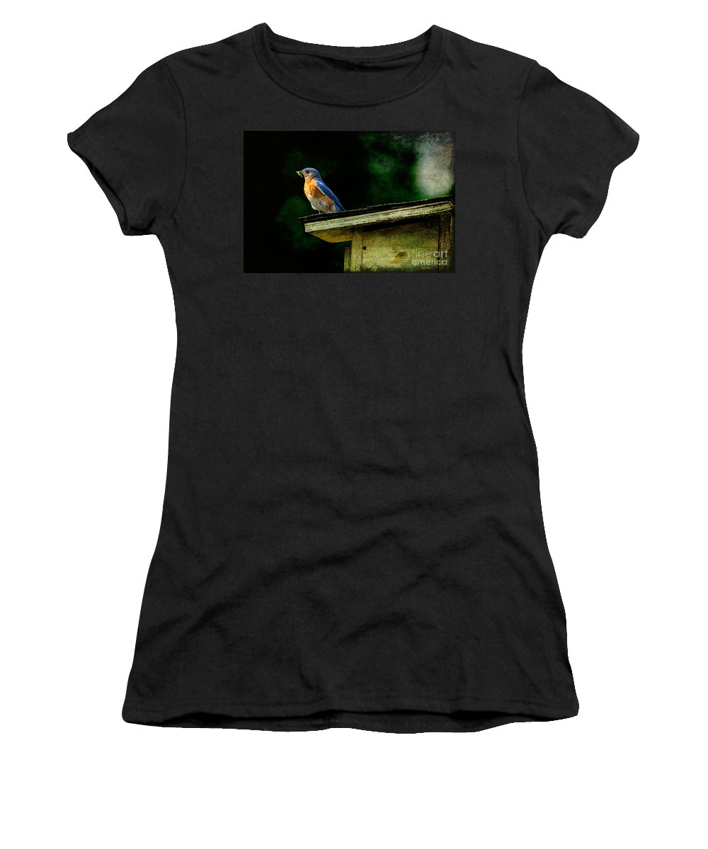 Lois Bryan Women's T-Shirt featuring the photograph Proud Provider by Lois Bryan