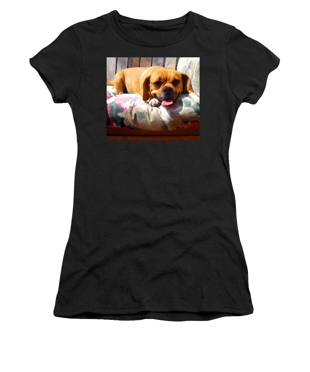 Animal Women's T-Shirt (Athletic Fit) featuring the painting Puggle Lounging by Amy Vangsgard