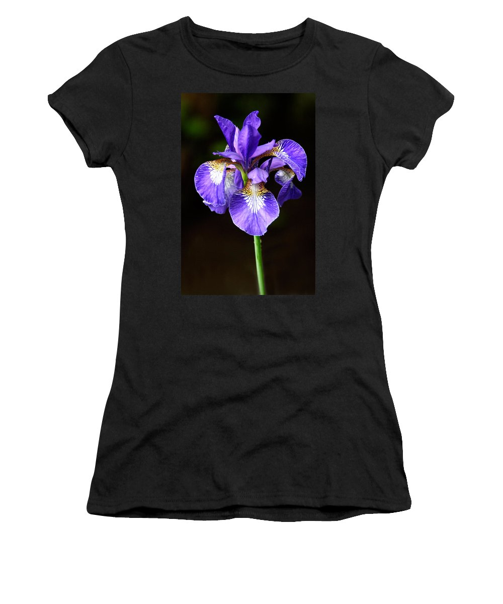 3scape Women's T-Shirt (Athletic Fit) featuring the photograph Purple Iris by Adam Romanowicz