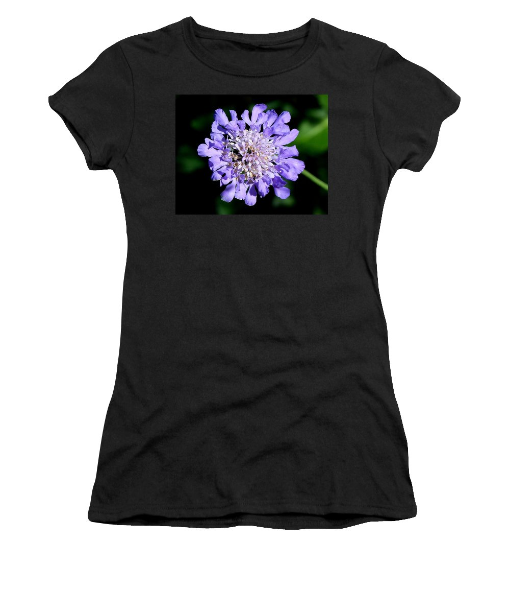 Outdoors Women's T-Shirt featuring the photograph Pin Cushion by Charles Ford
