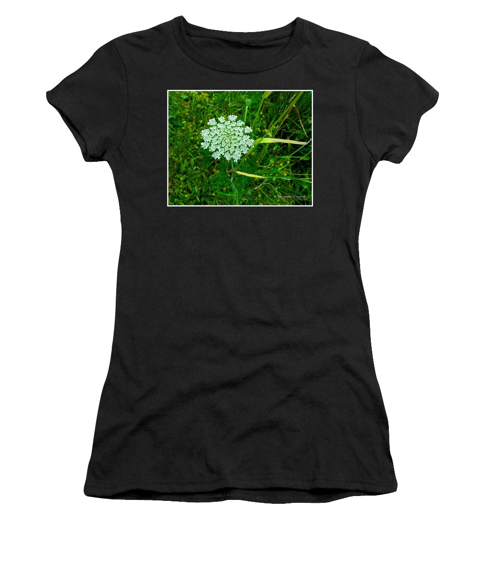 Flowers Women's T-Shirt featuring the photograph Queen Annes Glory by Kendall Kessler