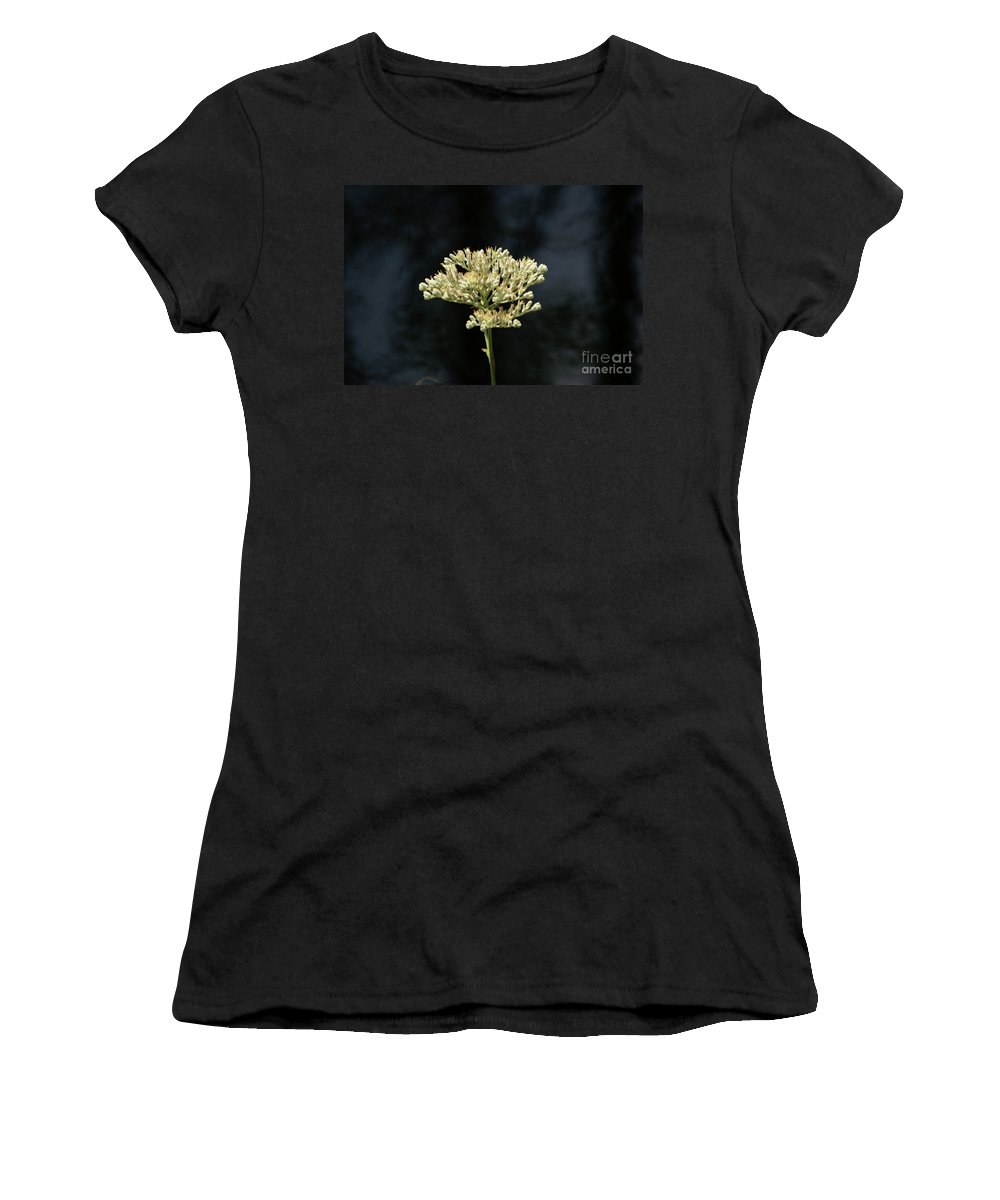 Wildflower Women's T-Shirt featuring the photograph Rebirth by Evelyn Hill