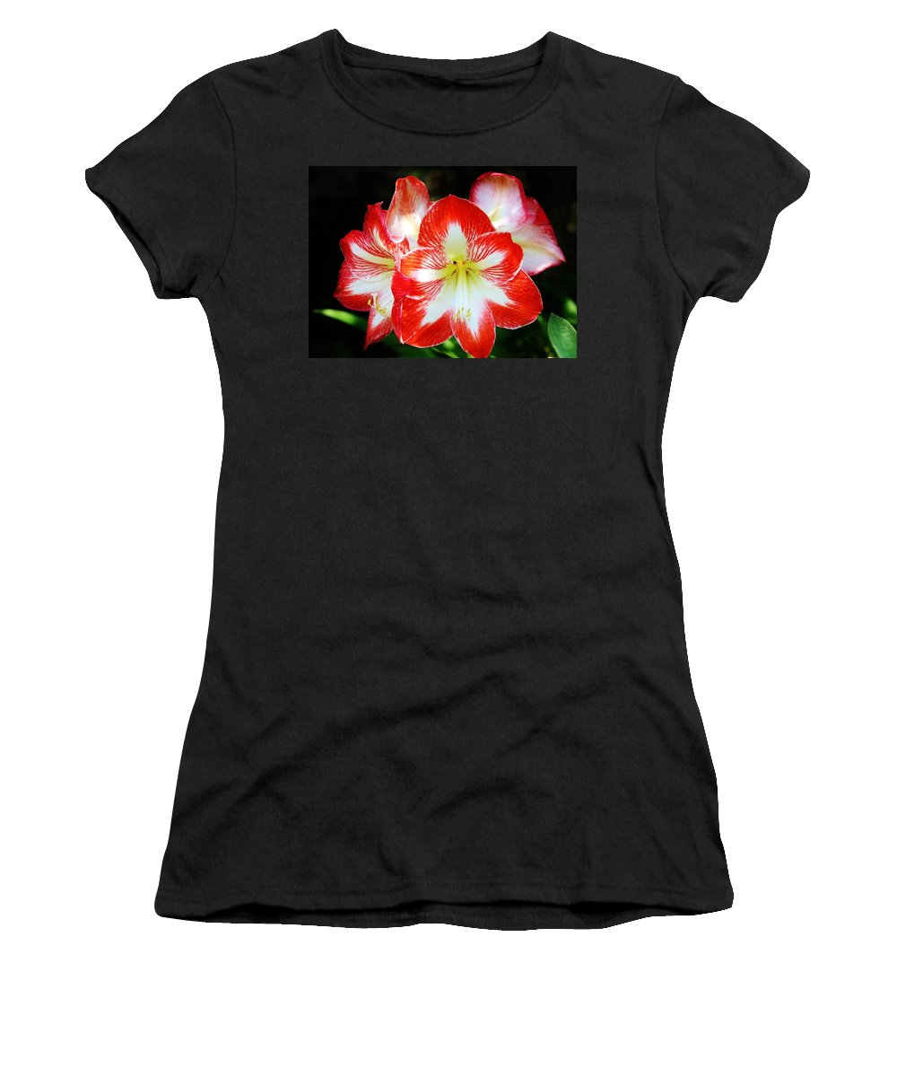 Lily Women's T-Shirt featuring the photograph Red And White Amaryllis by Cynthia Guinn