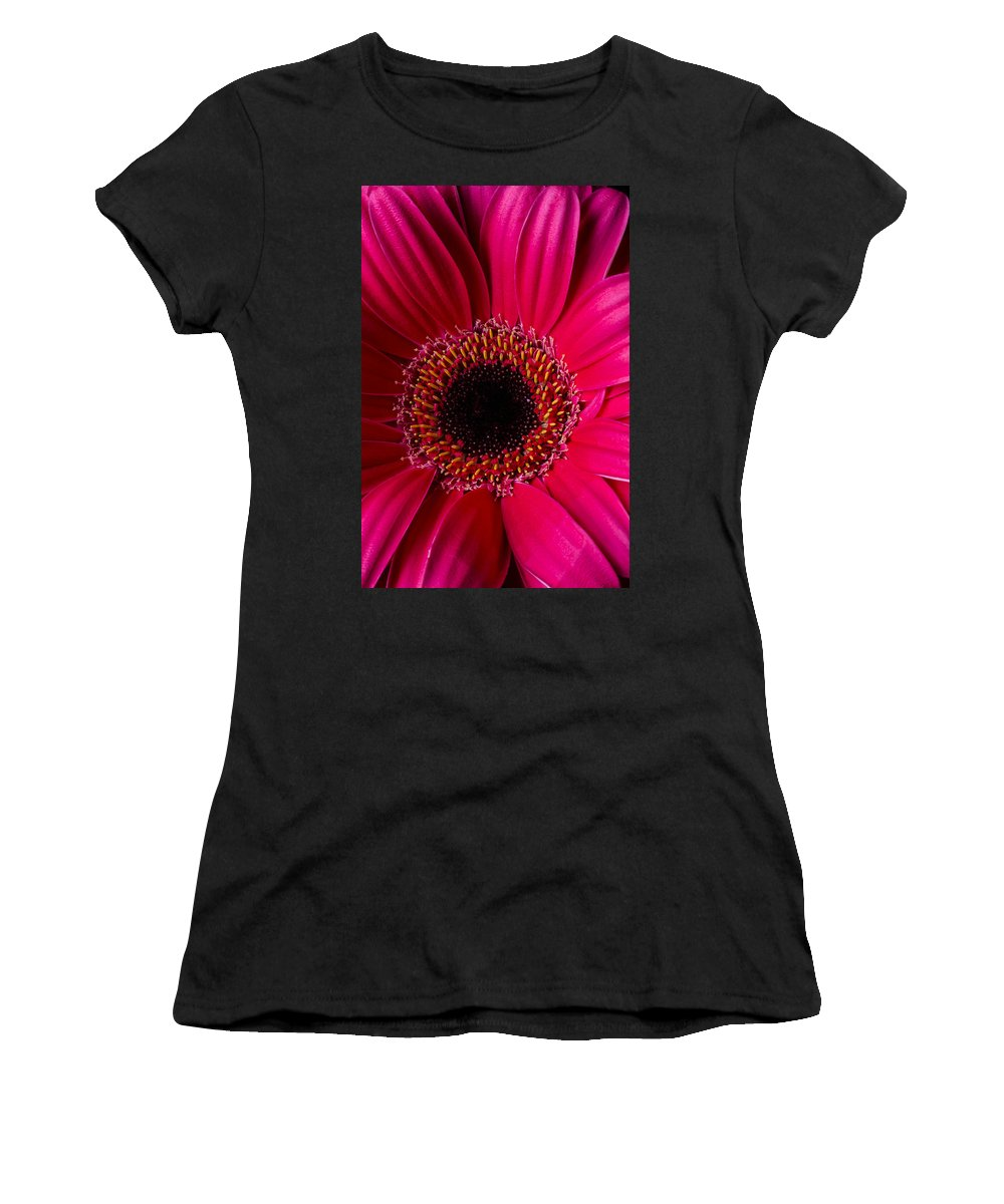 Red Gerbera Daisy Women's T-Shirt featuring the photograph Red Daisy Close Up by Garry Gay