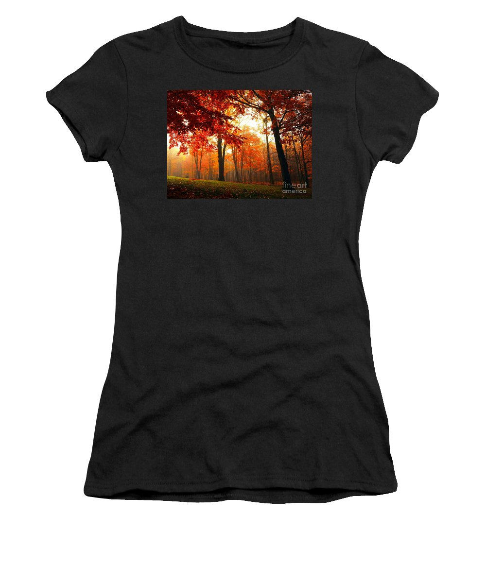 Red Women's T-Shirt featuring the photograph Red Maple Forest by Terri Gostola
