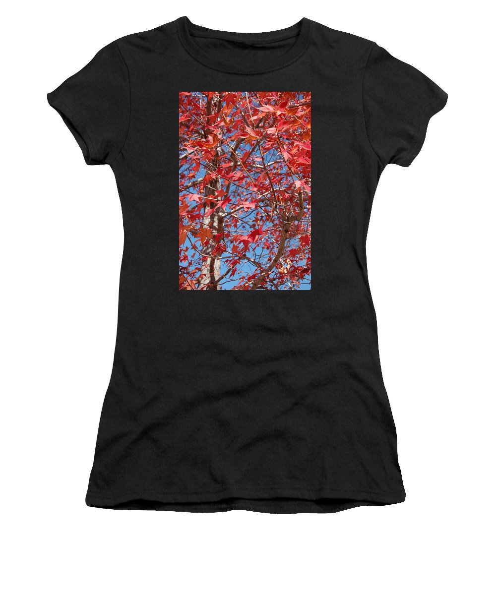 Linda Brody Women's T-Shirt (Athletic Fit) featuring the photograph Red Maple Leaves by Linda Brody