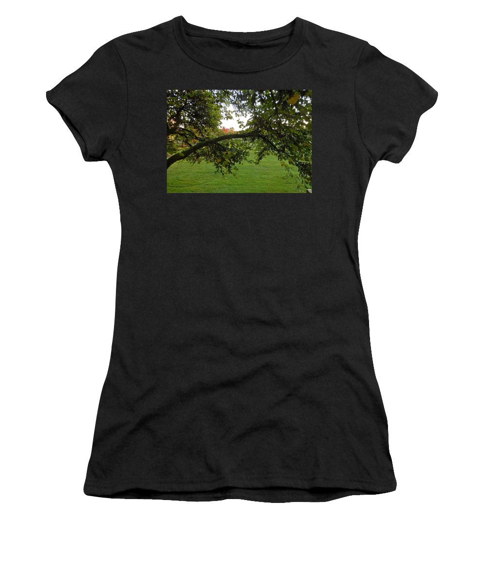Redbud Women's T-Shirt (Athletic Fit) featuring the photograph Redbud Tree In Autumn by Susan Wyman