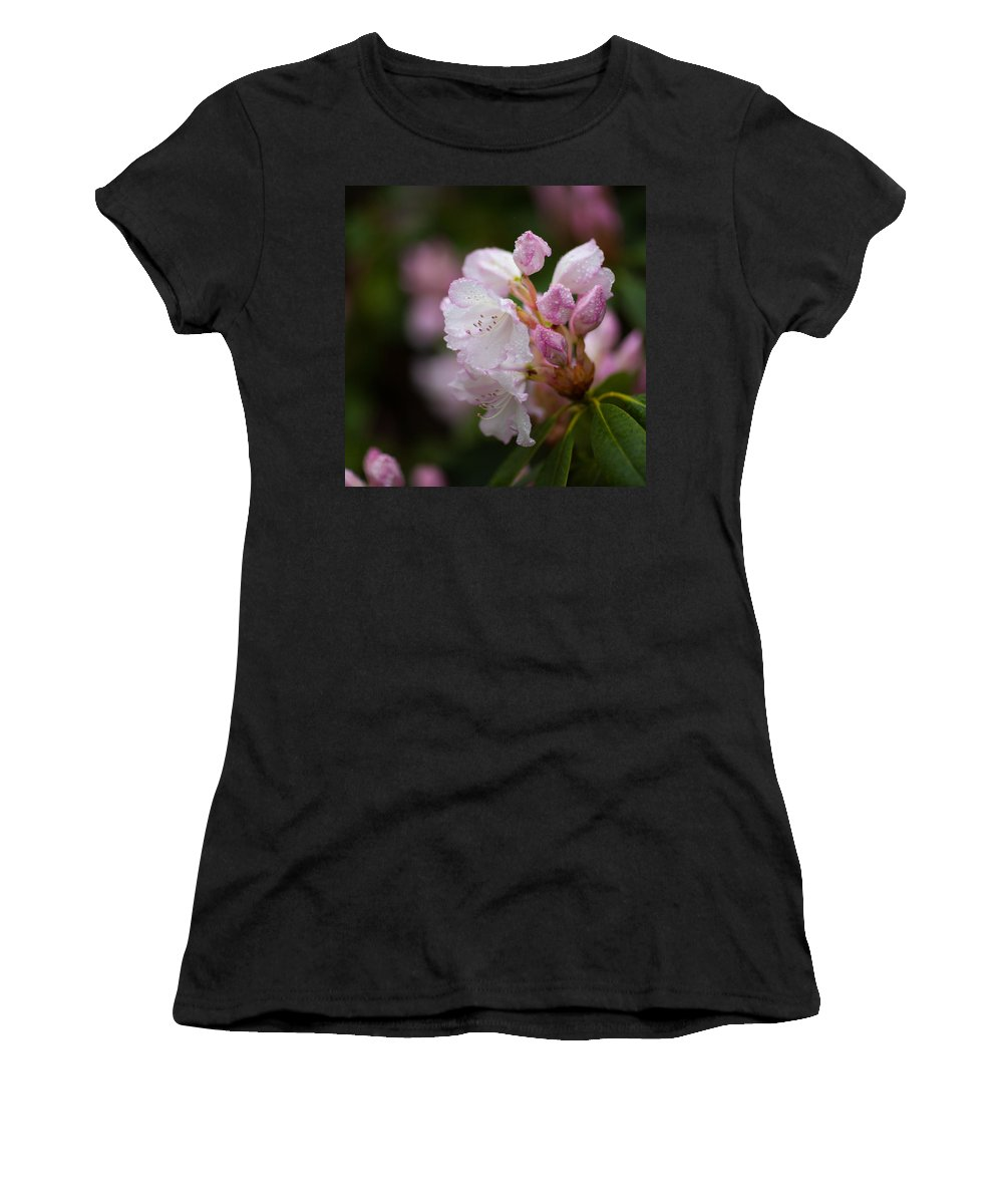 Rhododendron Women's T-Shirt (Athletic Fit) featuring the photograph Rhododendron Enborne by Ralf Kaiser