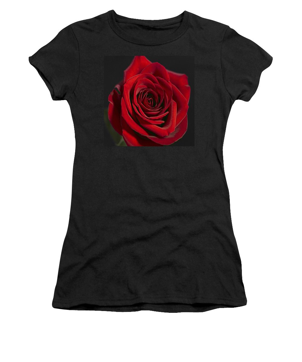 Red Rose Women's T-Shirt featuring the photograph Rose 11 by Ingrid Smith-Johnsen