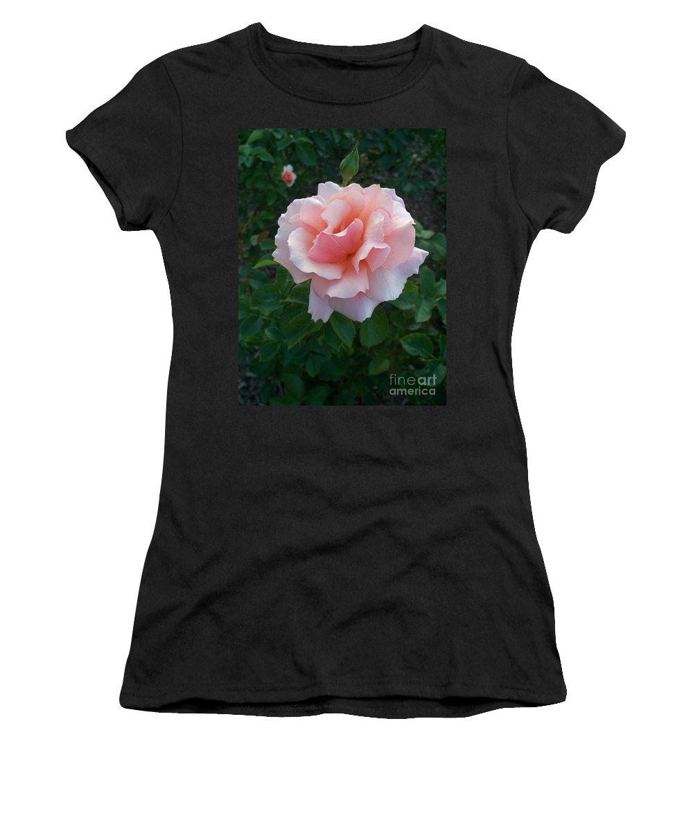 Pink Women's T-Shirt (Athletic Fit) featuring the photograph Rose by Eric Schiabor