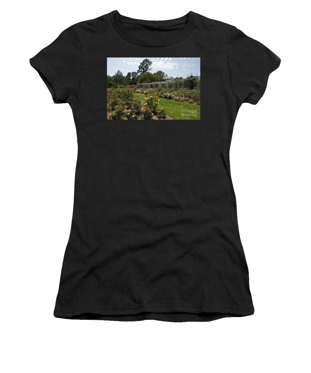 Huntington Library Women's T-Shirt featuring the photograph Rose Garden At The Huntington Library by Jason O Watson
